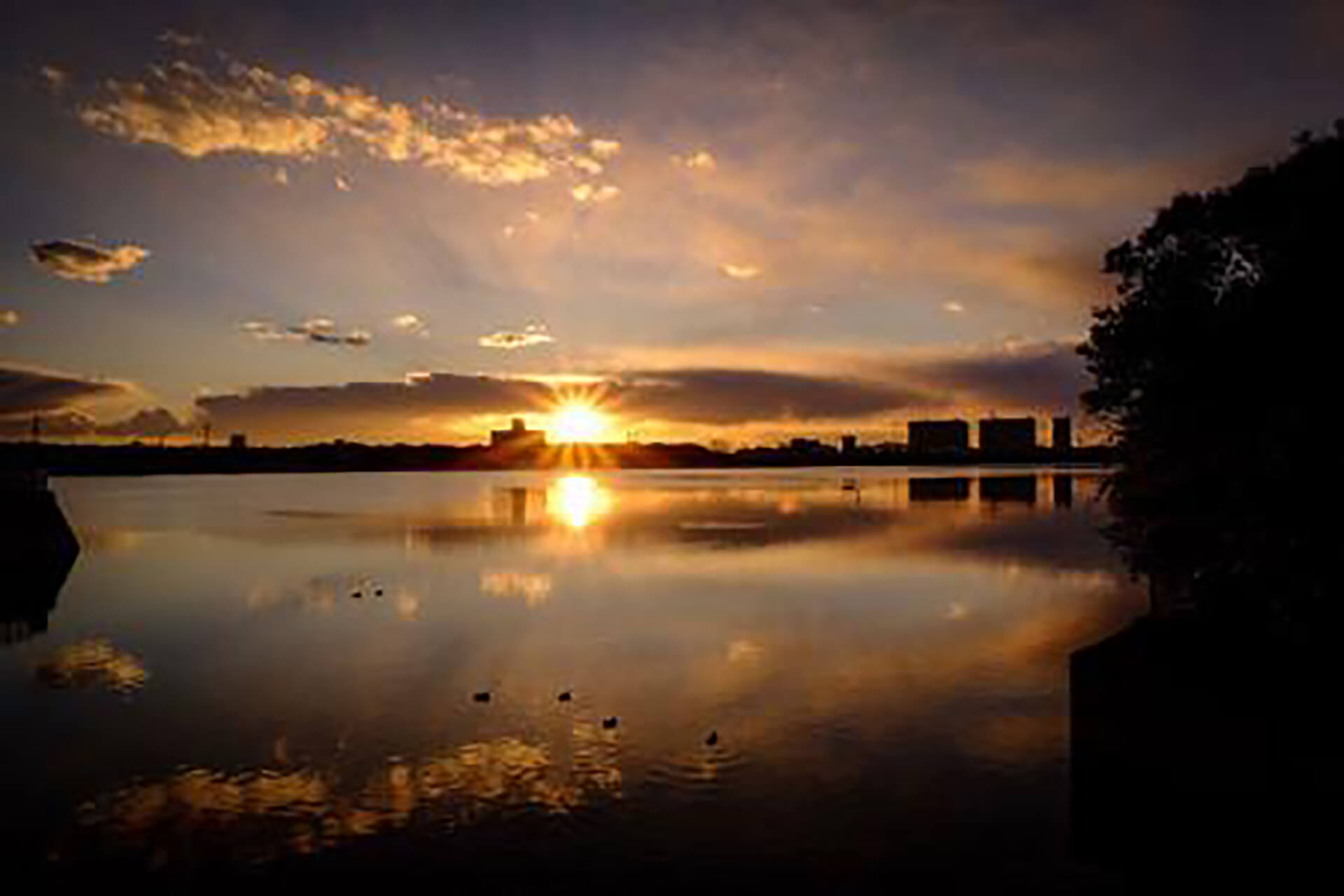この写真は干潟の夕日を撮影したものです