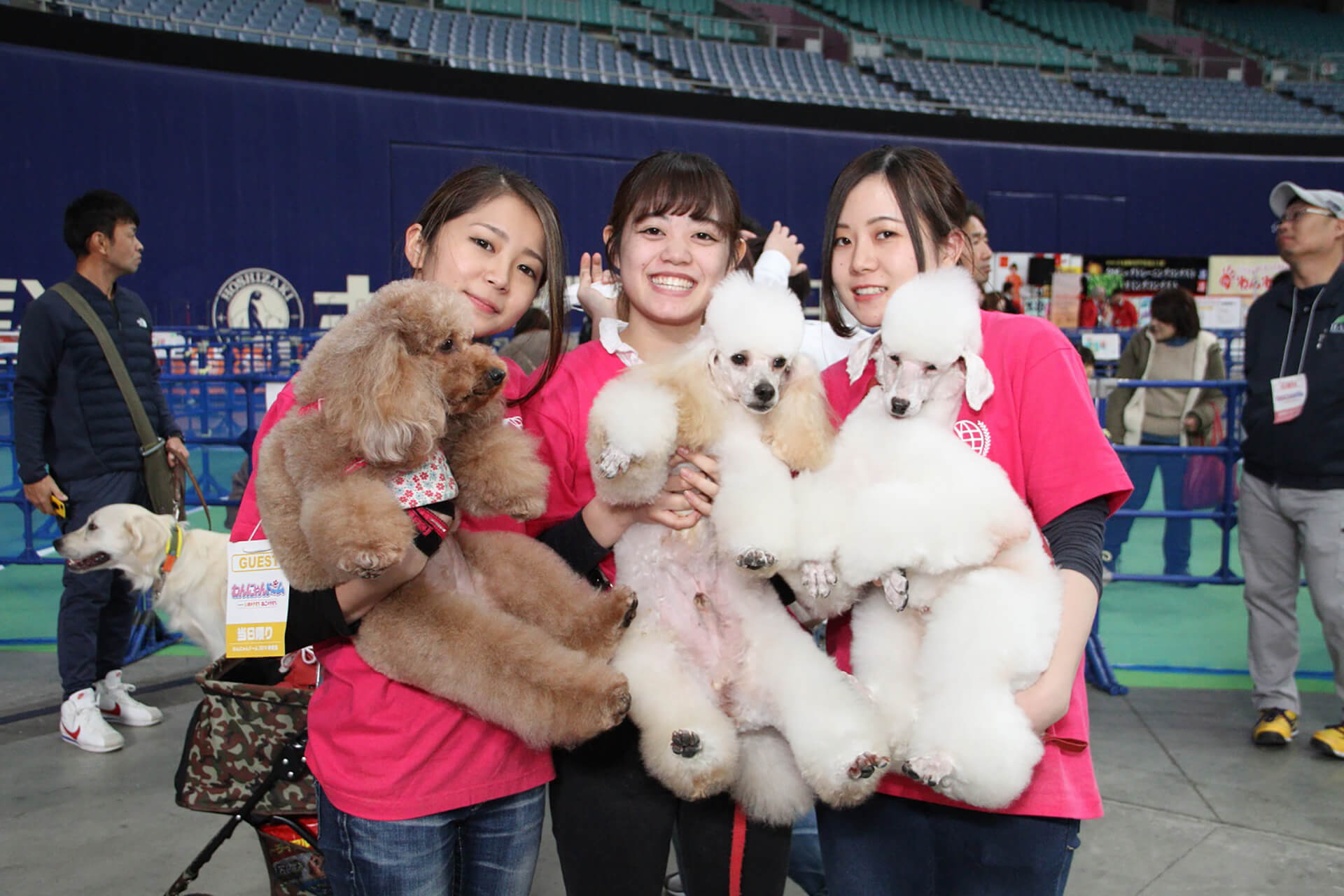 この写真はわんにゃんドーム2019の過去開催の様子で、犬を抱っこしているスタッフです