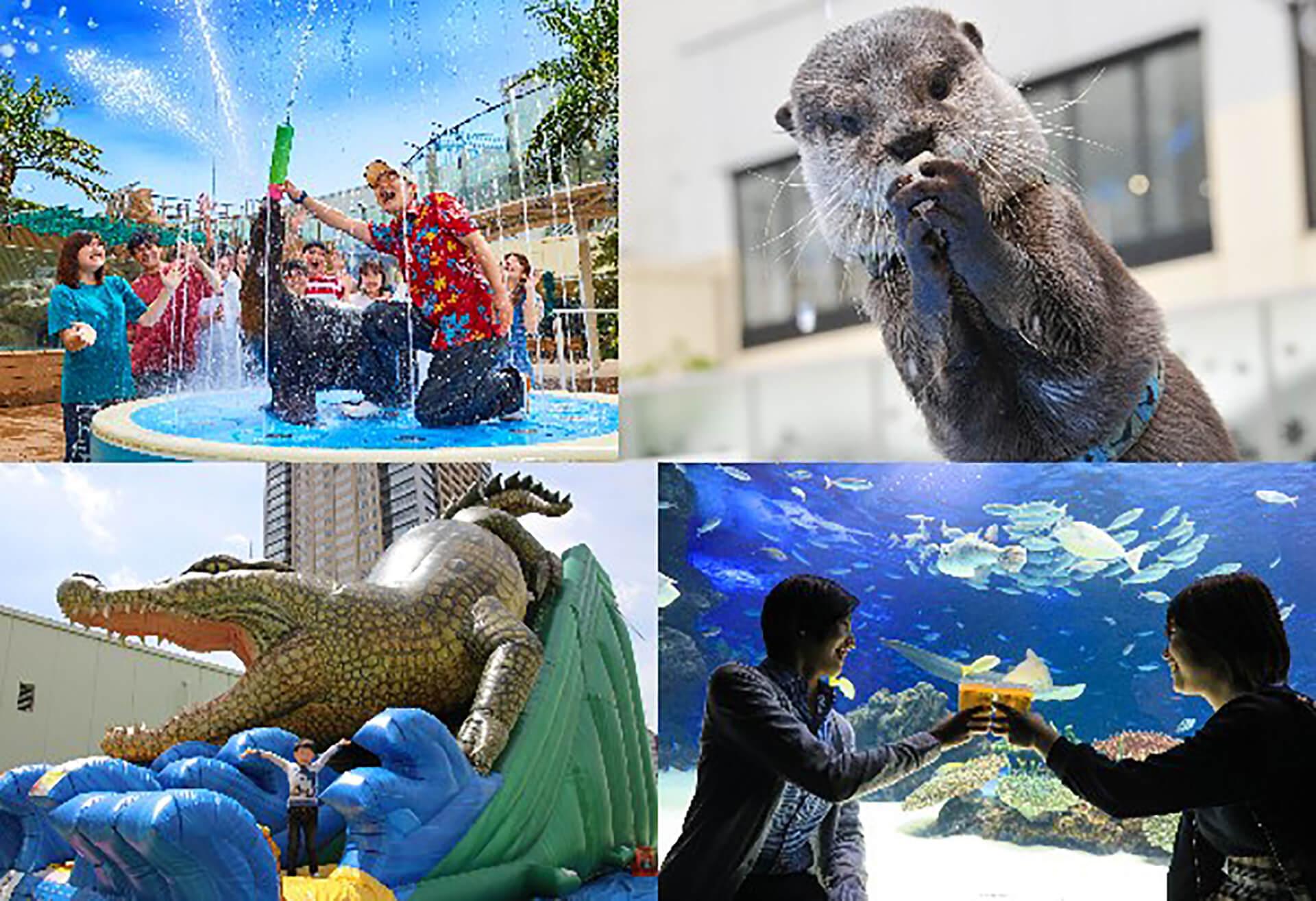 この写真はサンシャイン水族館 夏フェス2019の、イベント様子を映したスナップ集4枚組です