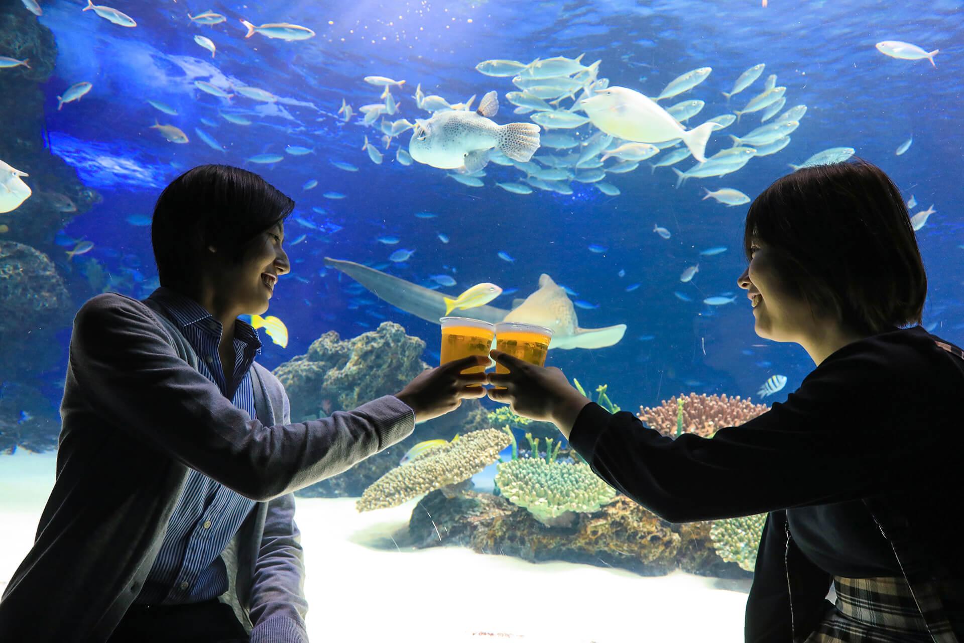 この写真はサンシャイン水族館 夏フェス2019の、Night Café & Bar の様子。ビール乾杯の様子