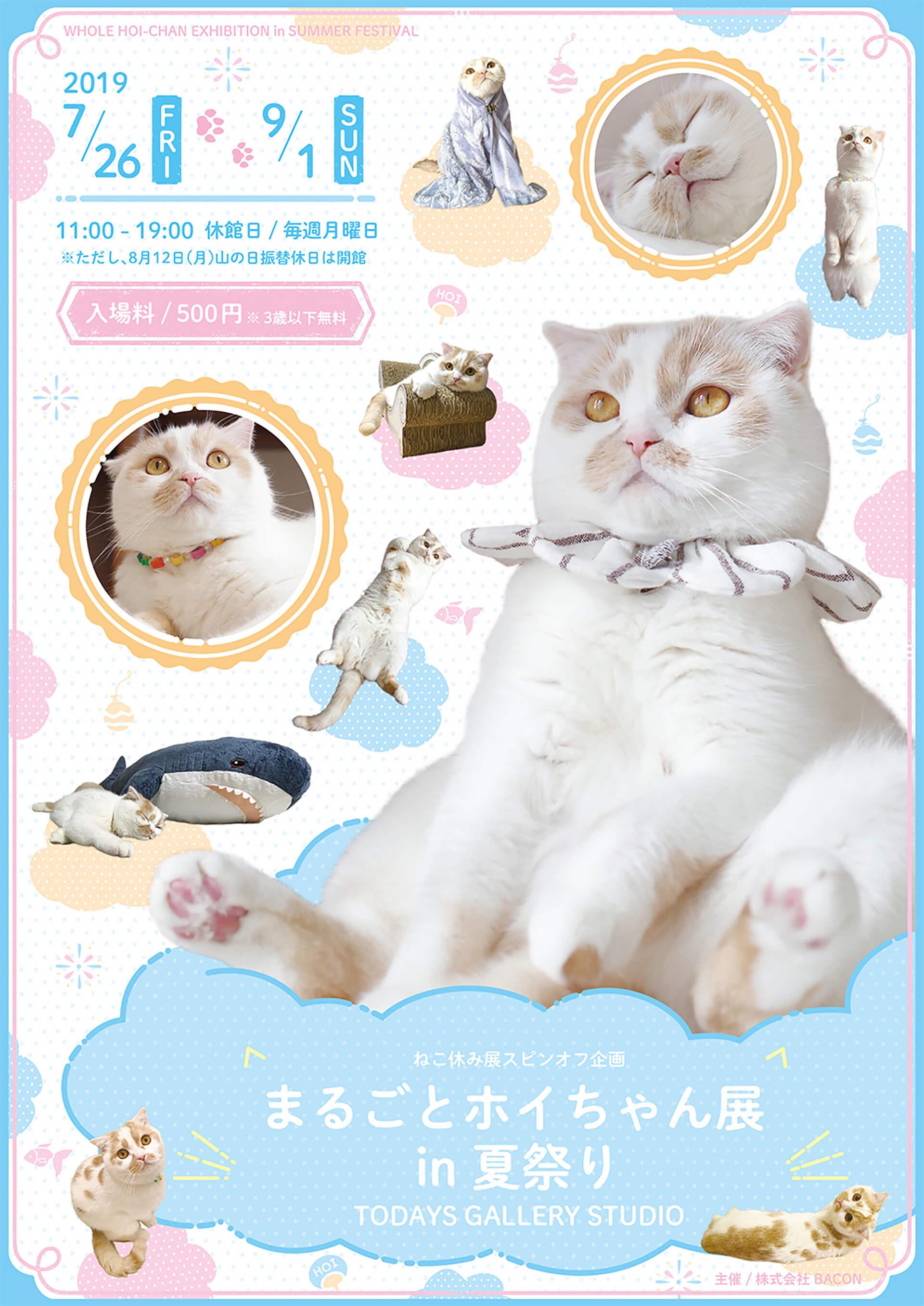 この写真はまるごとホイちゃん展 in 夏祭りの告知ポスター。ホイちゃんが沢山映ったビジュアルです