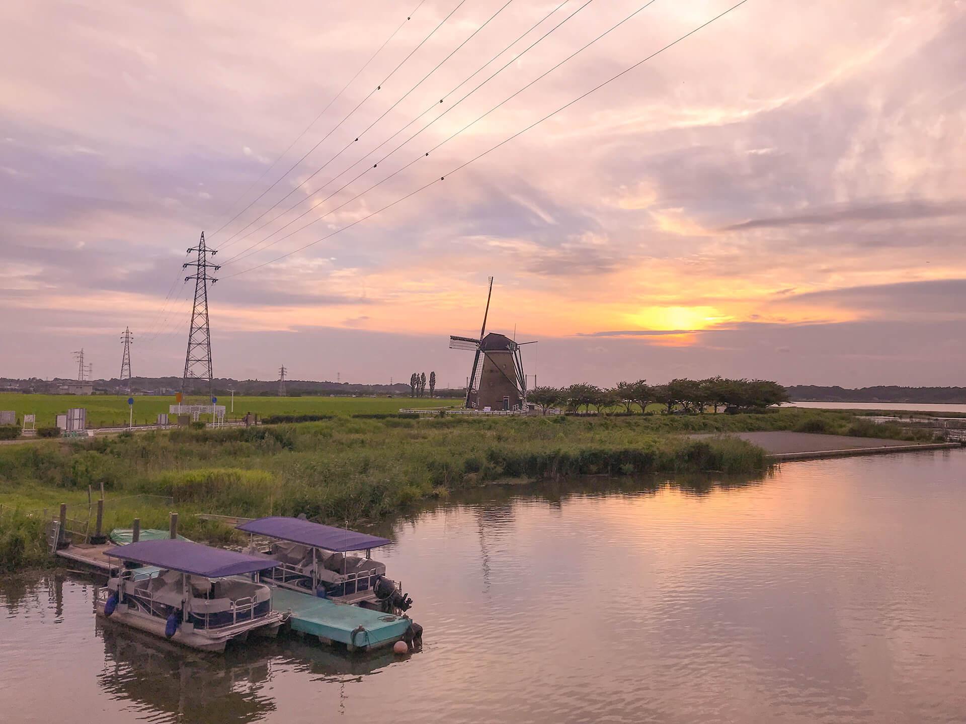 この写真は風車のひまわりガーデンのイメージ。印旛沼が夕日に映える図