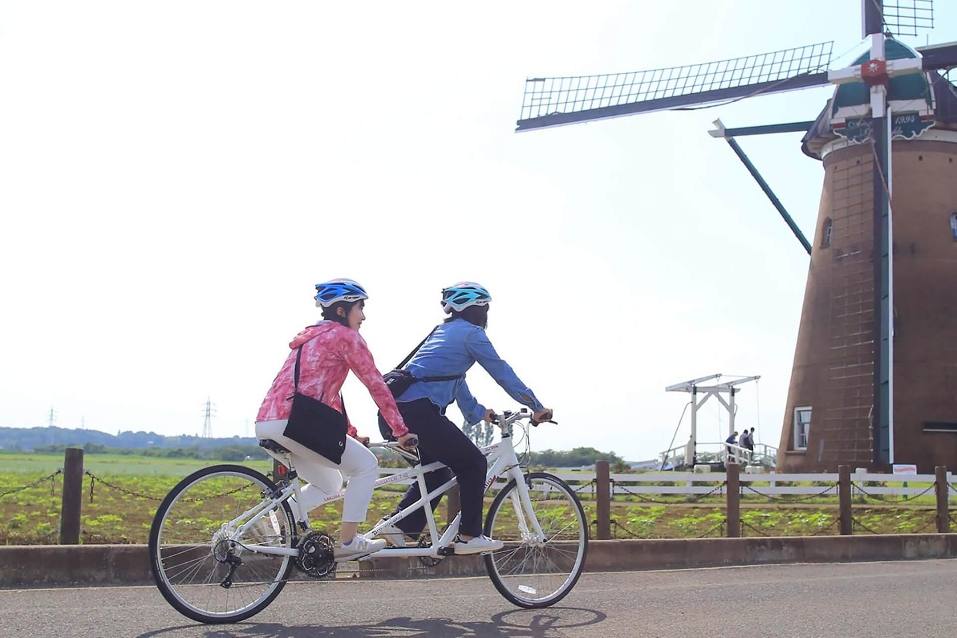この写真は風車のひまわりガーデンの会場付近をタンデム自転車でツーリングする様子です