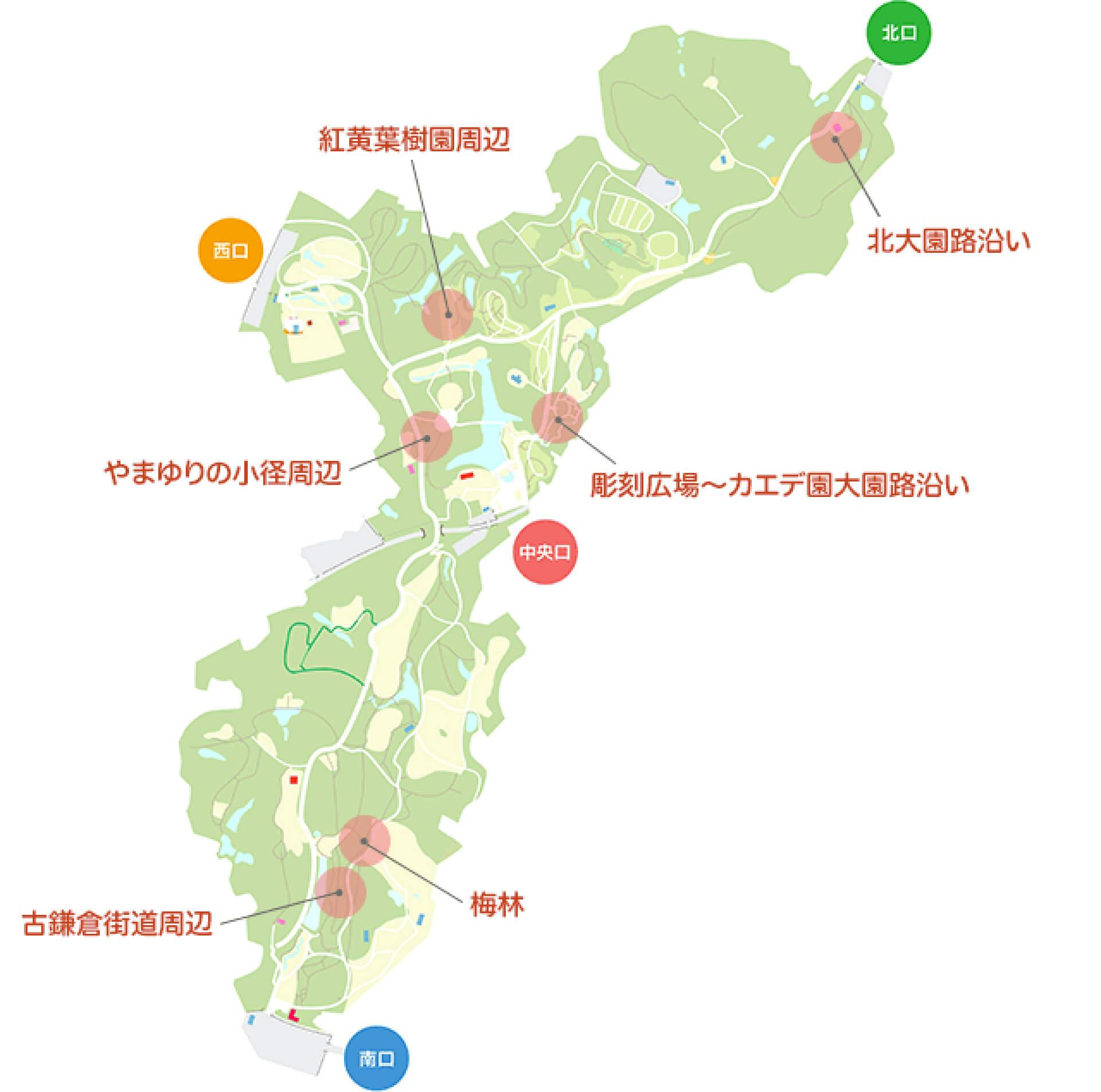 この写真は国営武蔵丘陵森林公園の俯瞰地図