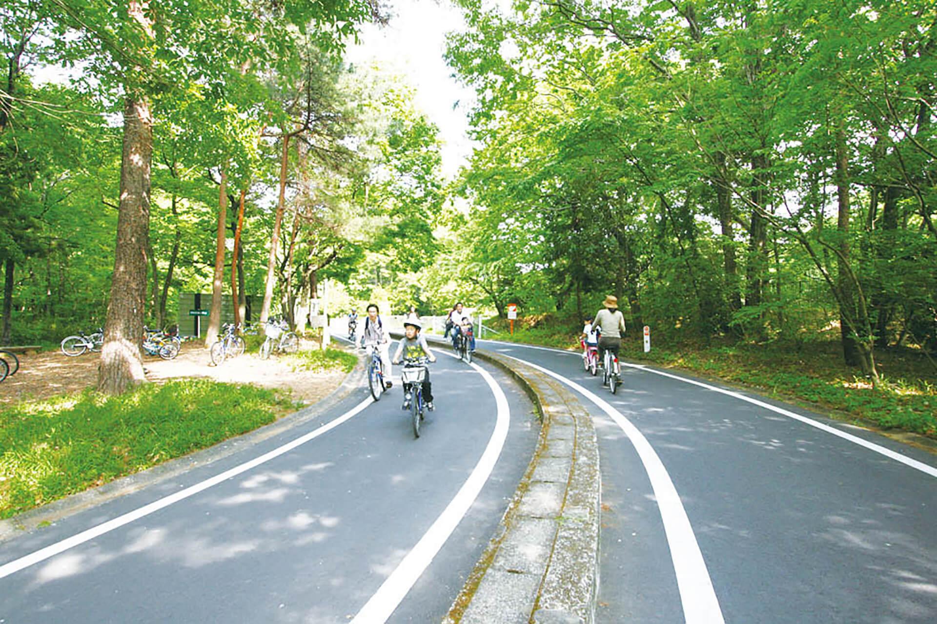 この写真は国営武蔵丘陵森林公園のサイクリングコースで楽しむ家族の様子