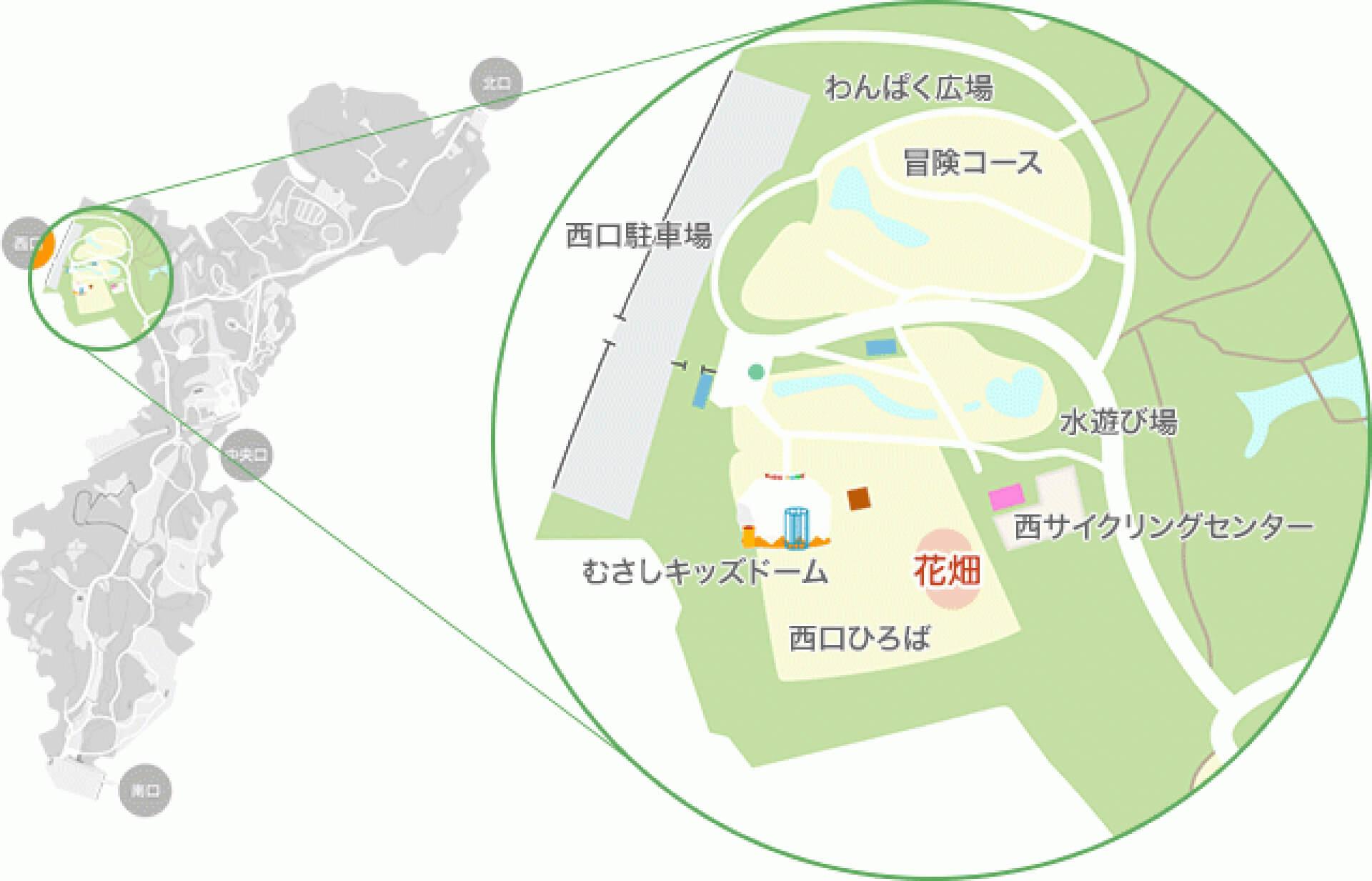 この写真は国営武蔵丘陵森林公園がピンク色のペチュニアイベントの開催地図。公園の俯瞰地図です