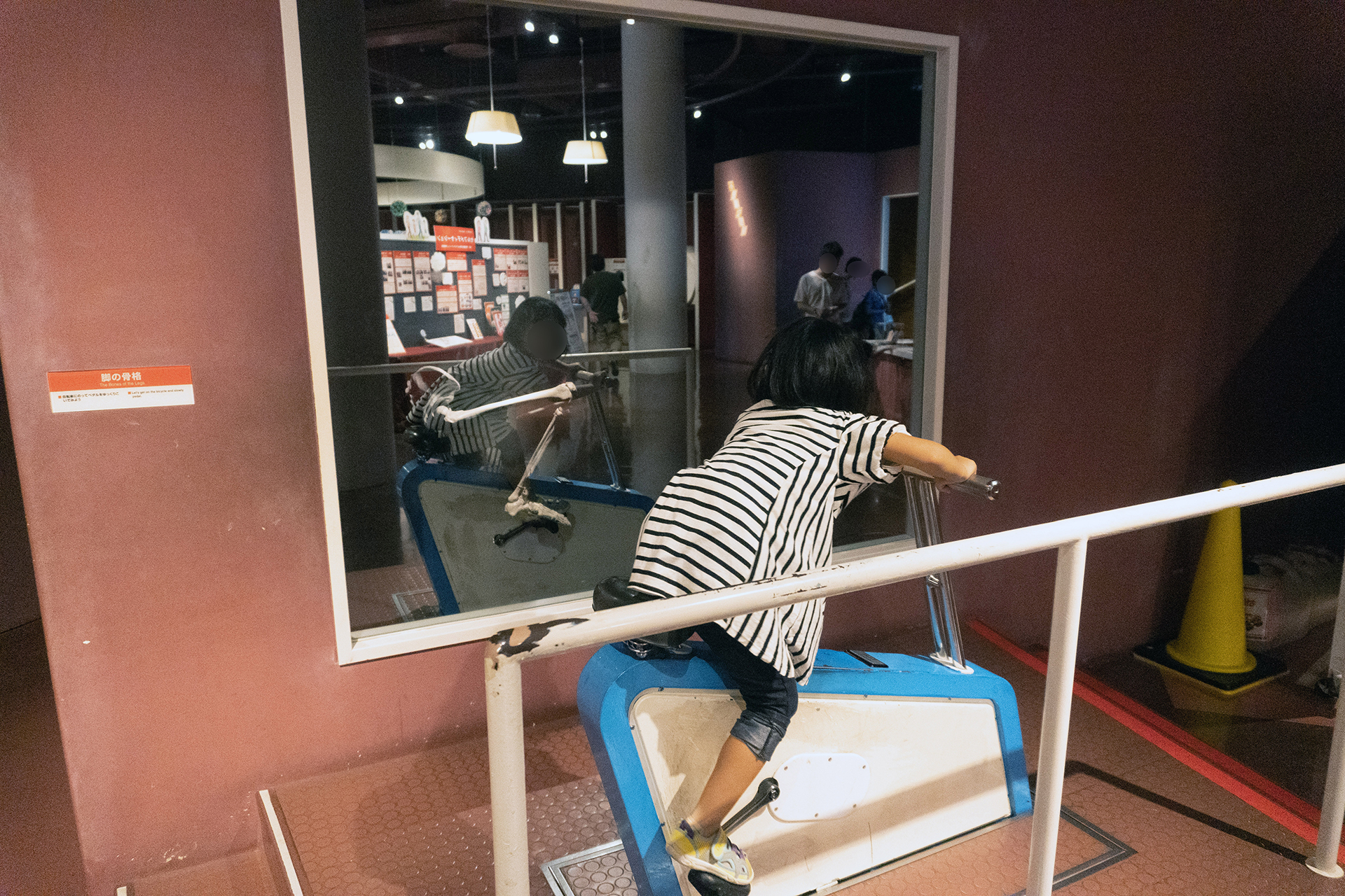 多摩六都科学館・からだの部屋・自転車