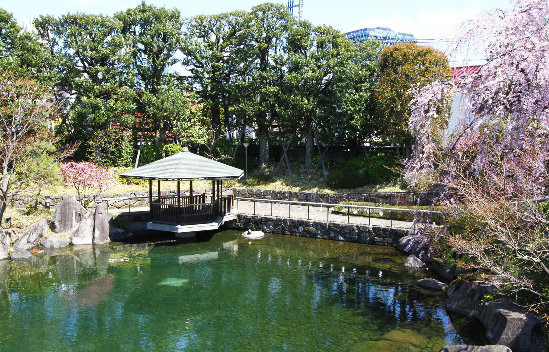 区立目白庭園・池