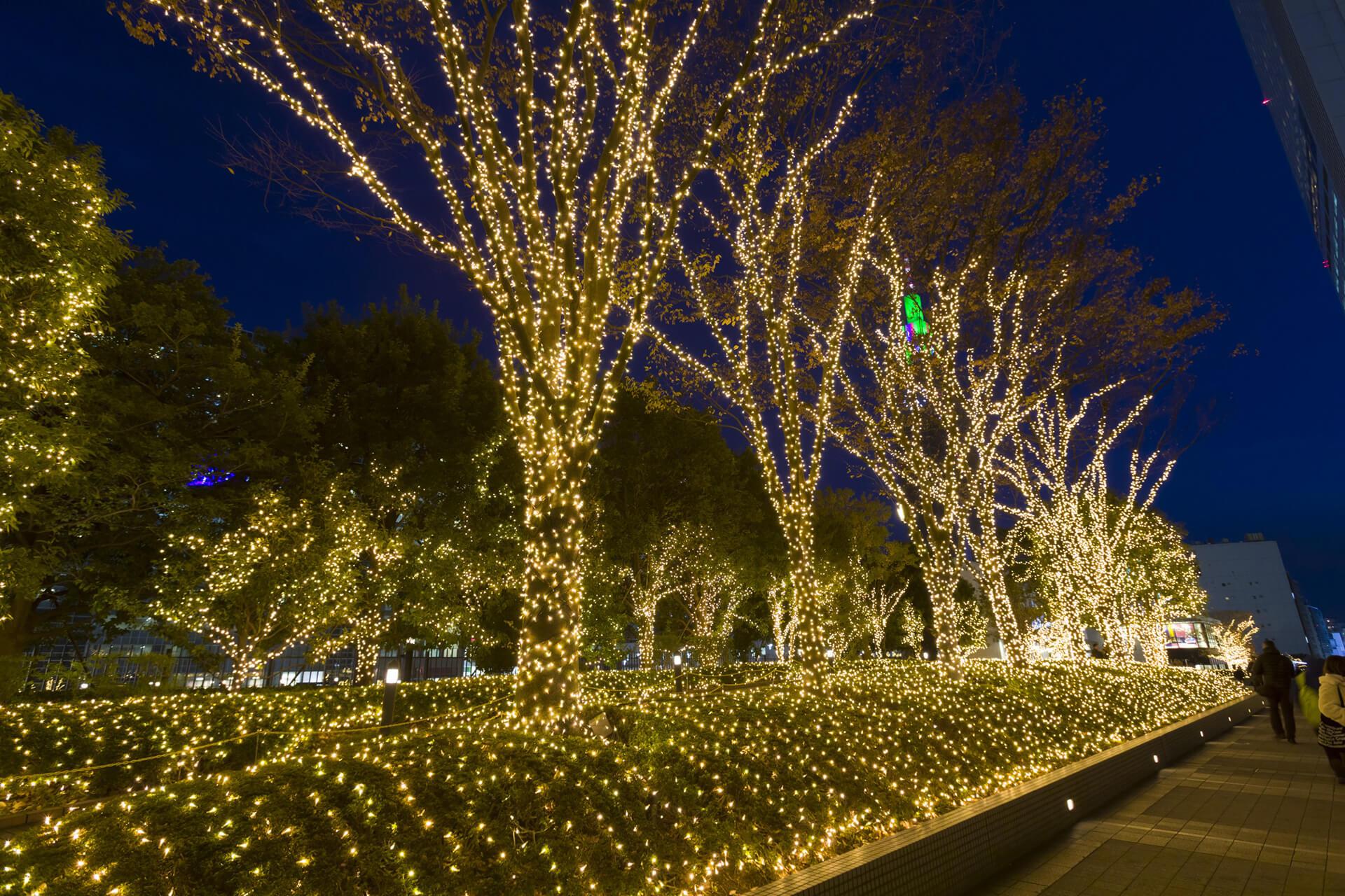 ライトアップ・新宿サザンテラス
