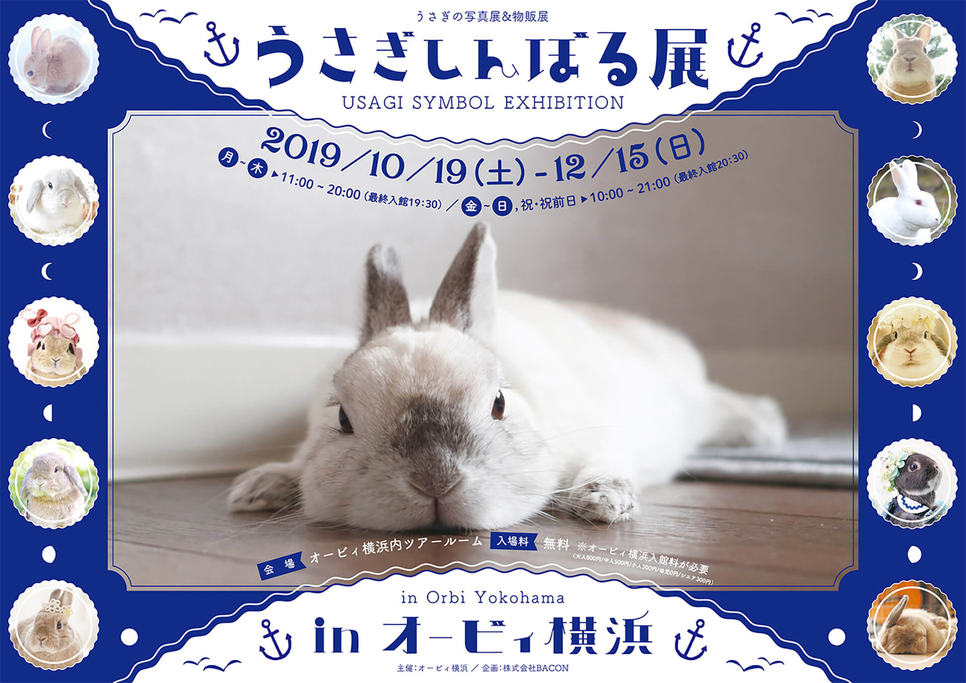 うさぎしんぼる展 in オービィ横浜バナー