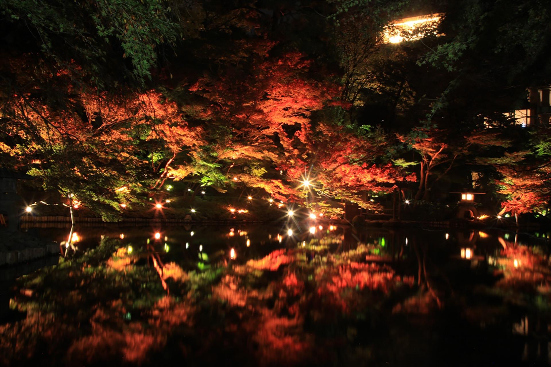八芳園夜景