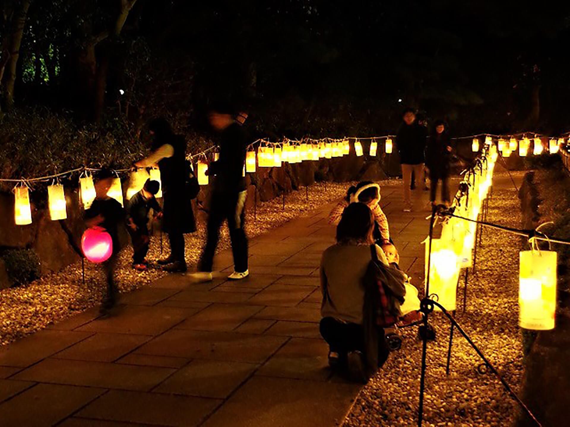 見浜園灯ろうまつり2019~庭園ライトアップ~