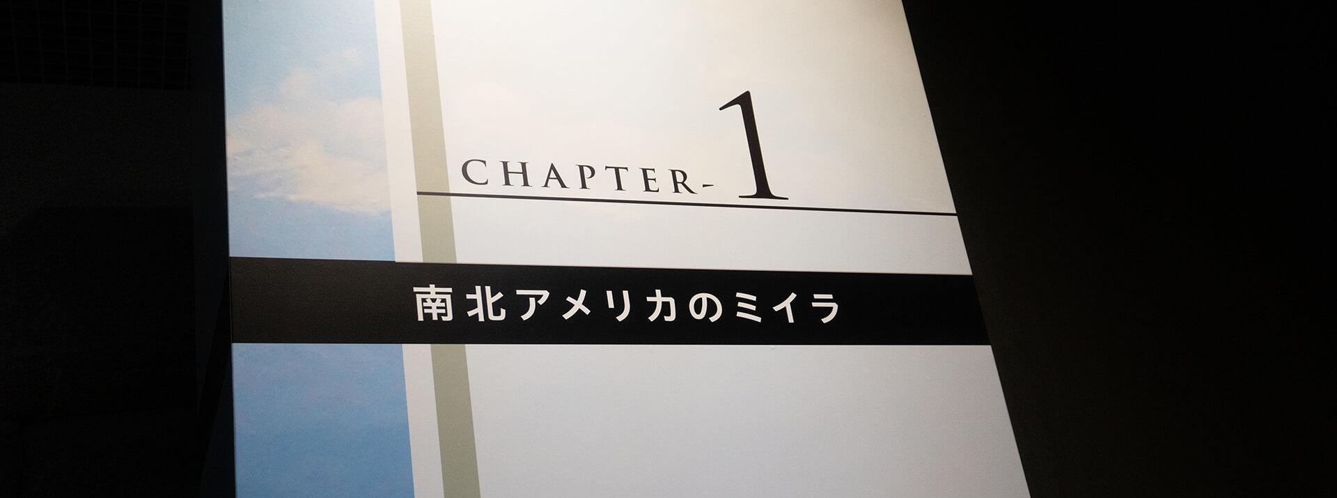 特別展ミイラ・セクション1