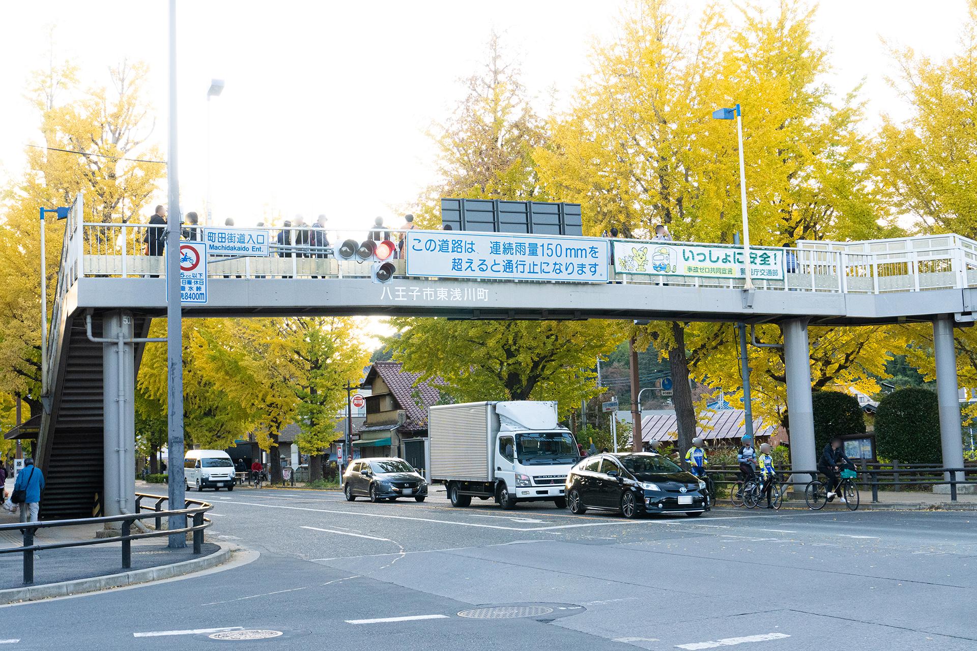 いちょう歩道橋
