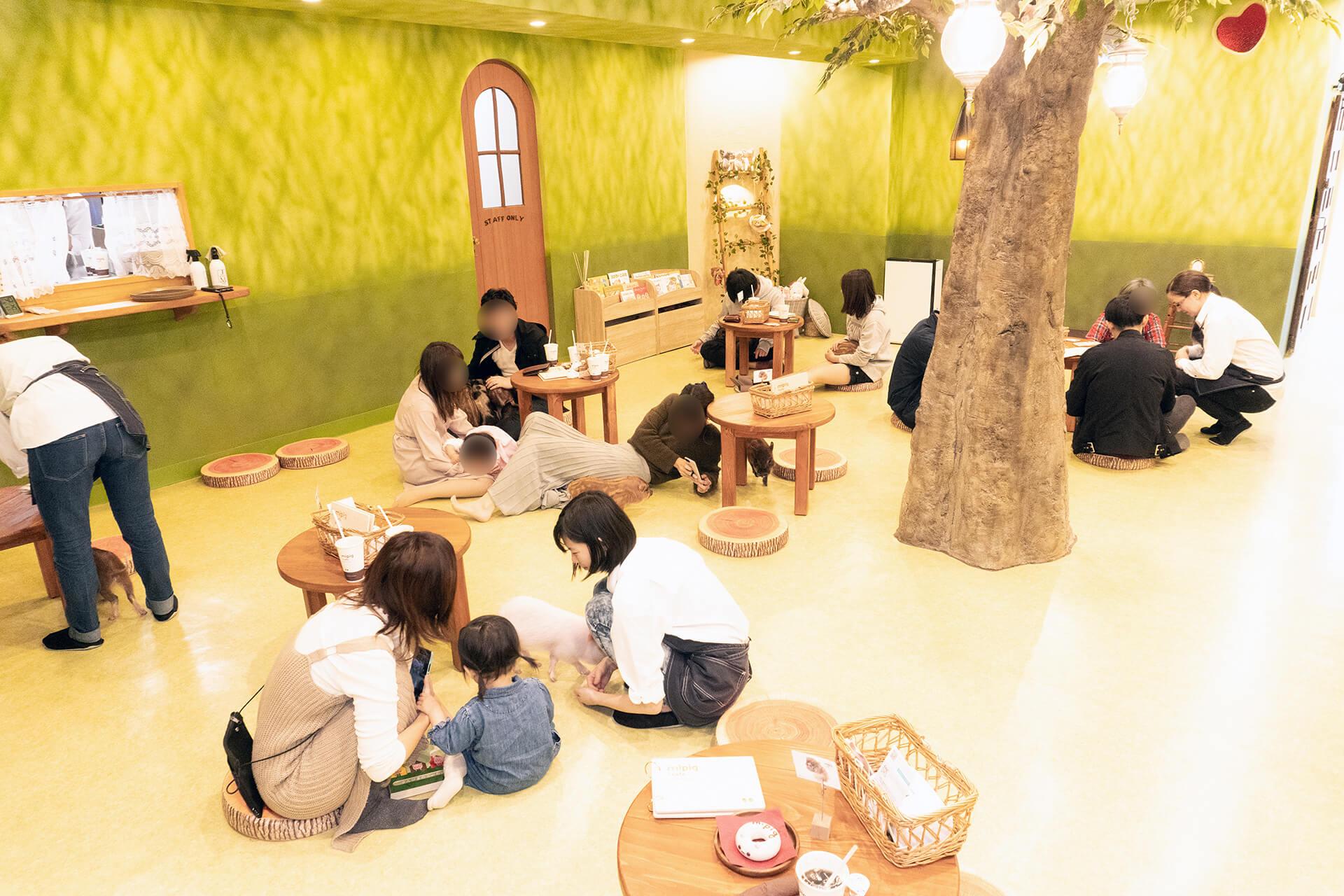 mipigcafe原宿店・フロア