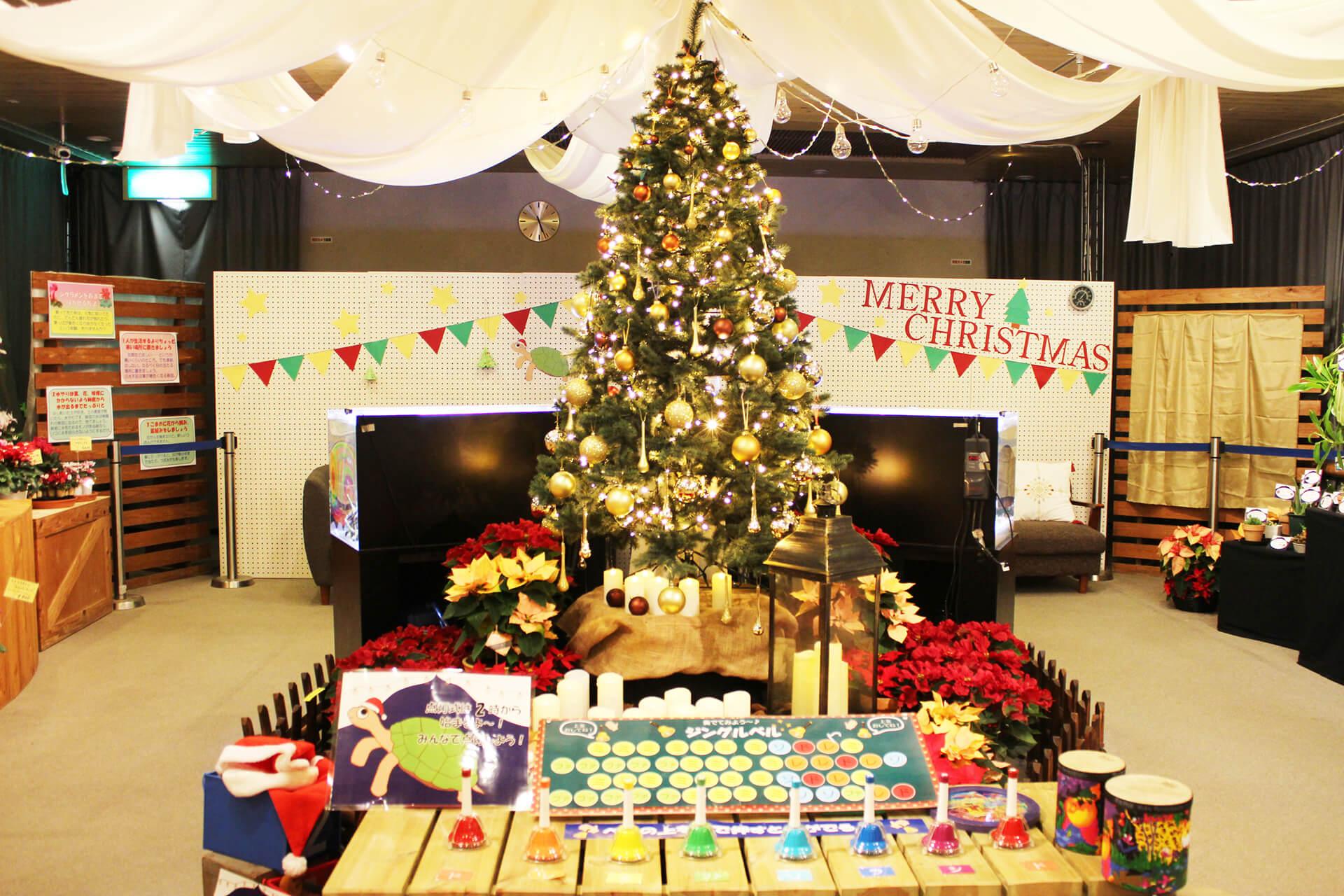 板橋区立熱帯環境植物館コスプレクリスマス