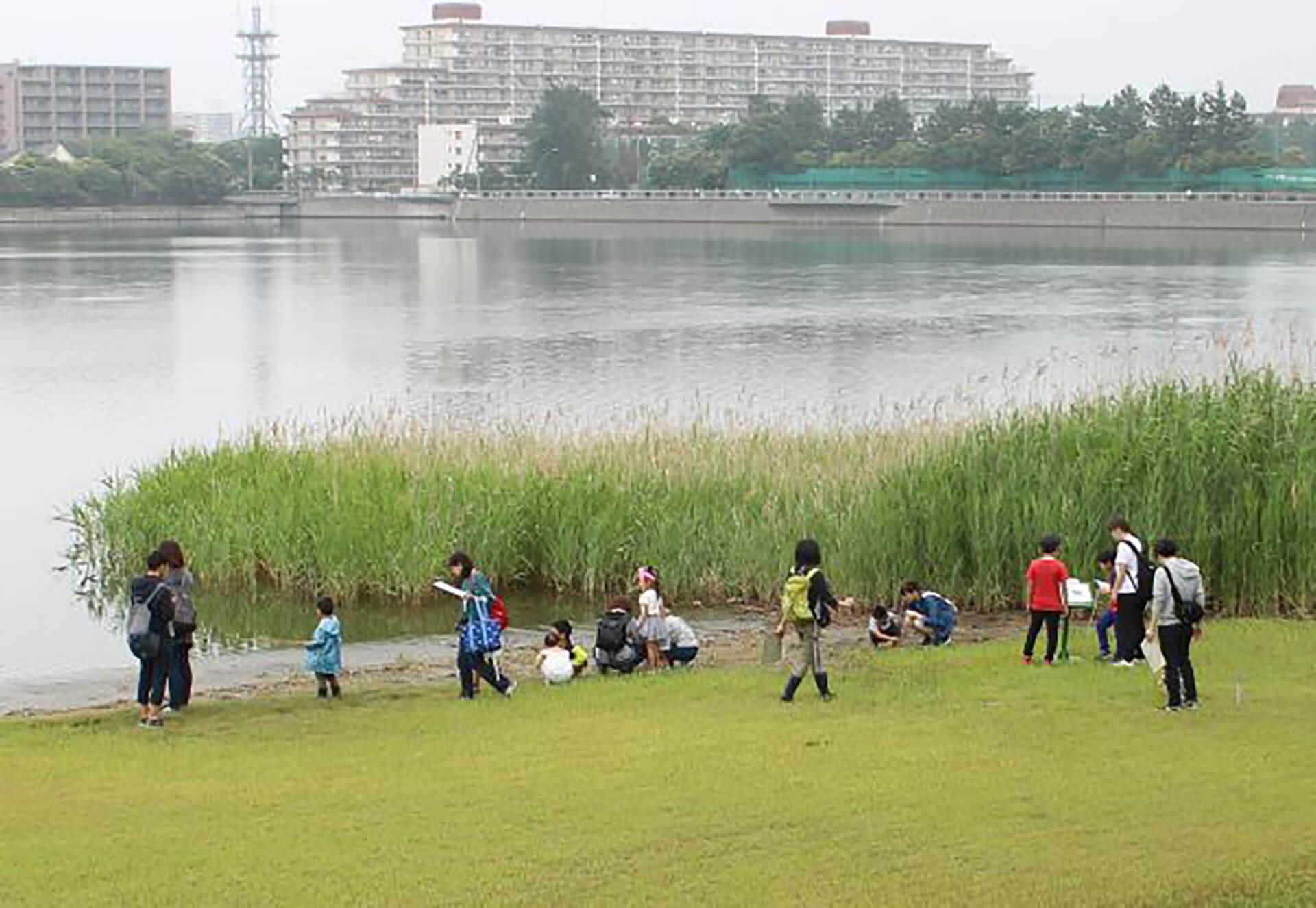 世界湿地の日まつり2020