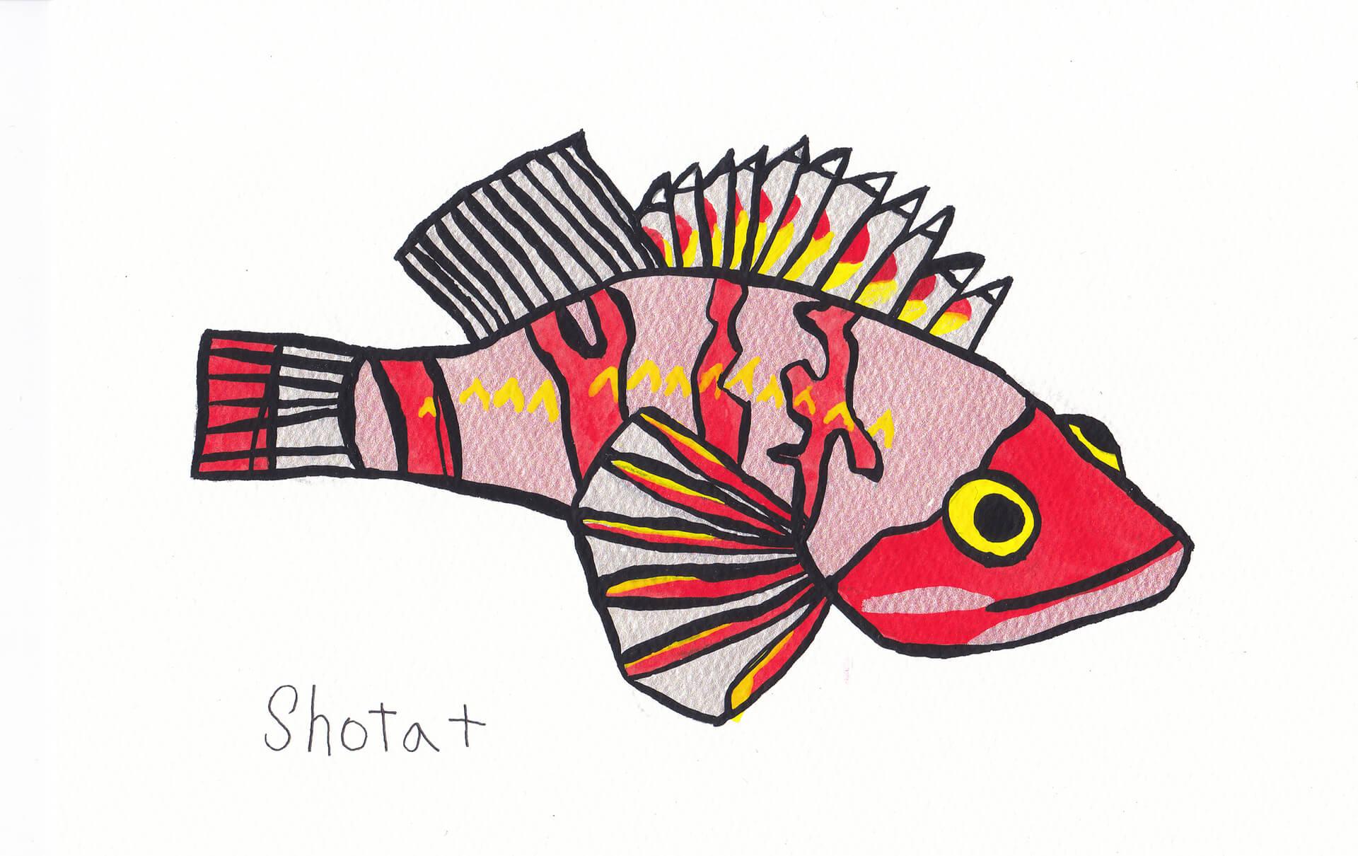 しな水の深海生物展/展示イラスト