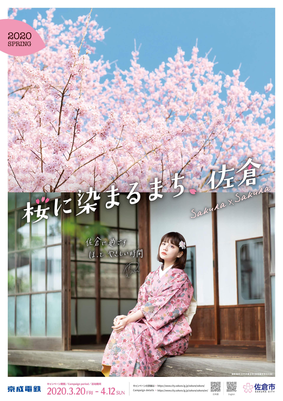 桜に染まるまち、 佐倉・ポスター