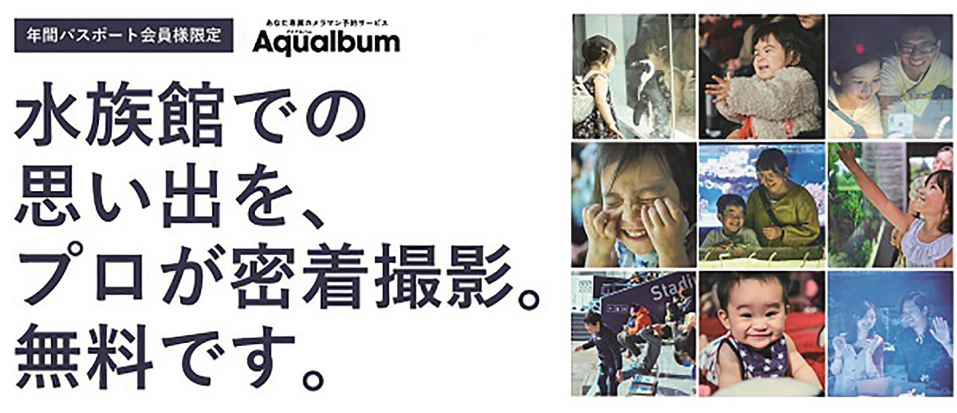 すみだ水族館・Aqualbum(アクアルバム)