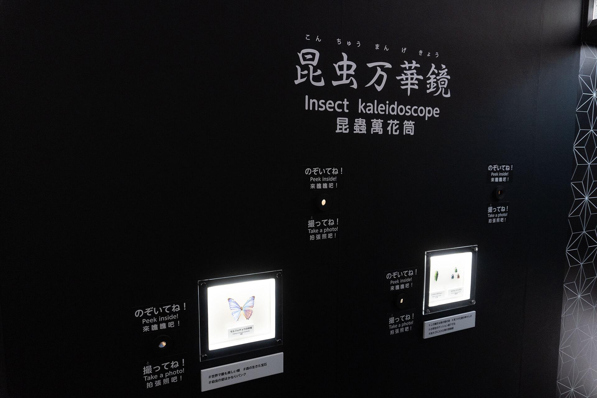 イキモノアート展・万華鏡