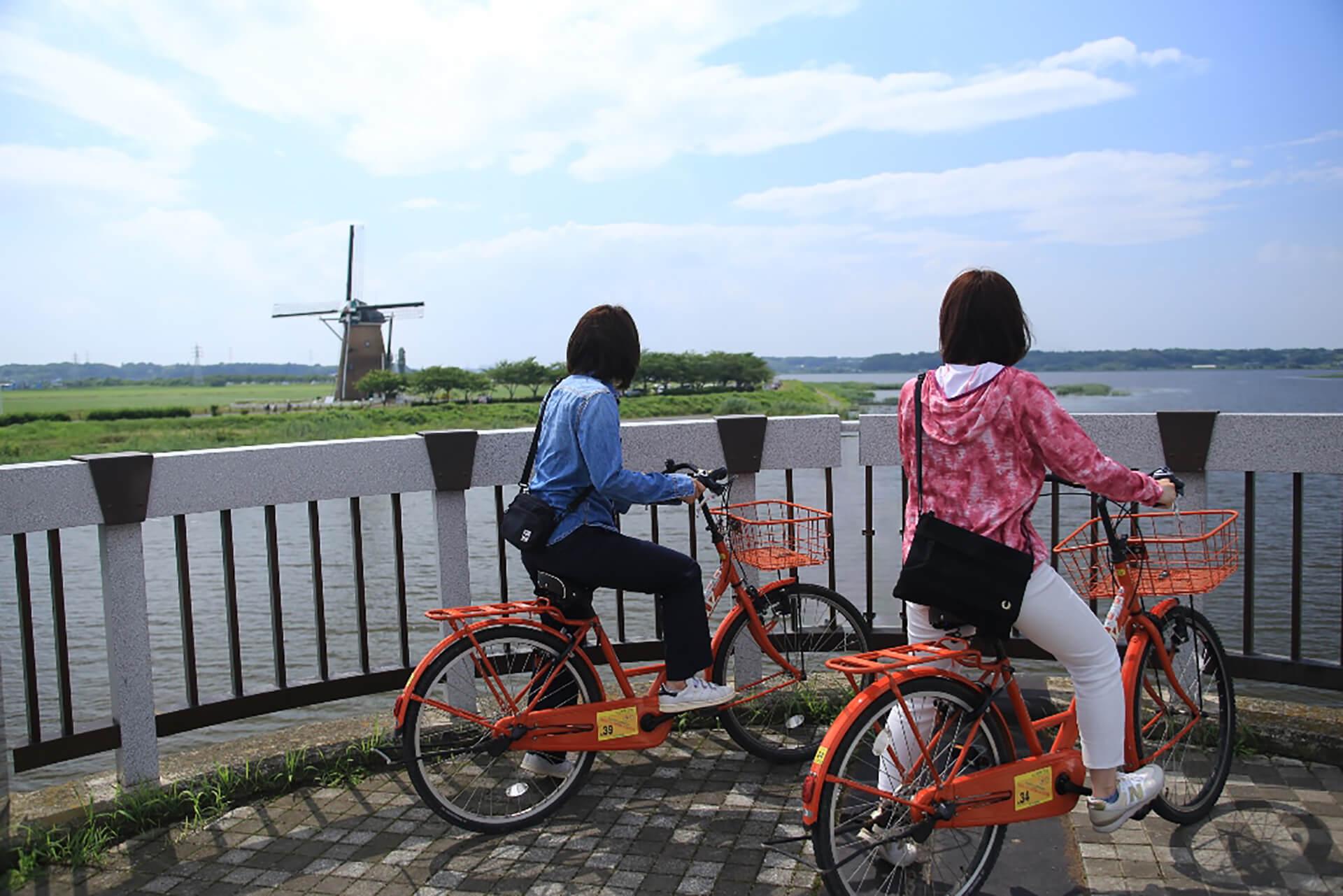 佐倉チューリップフェスタ2020/レンタル自転車