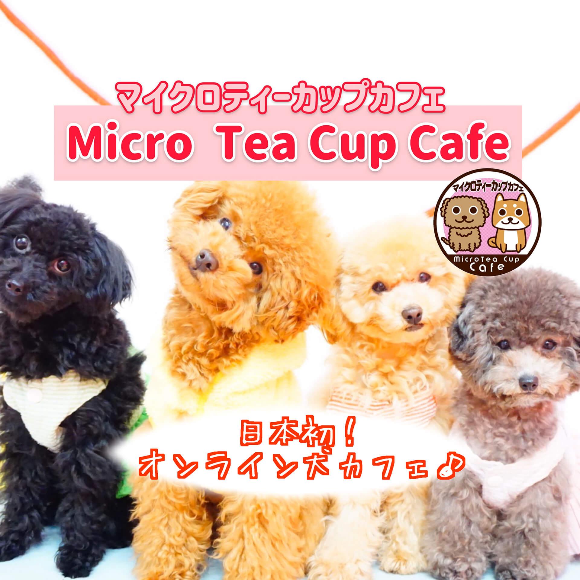 オンライン犬カフェ