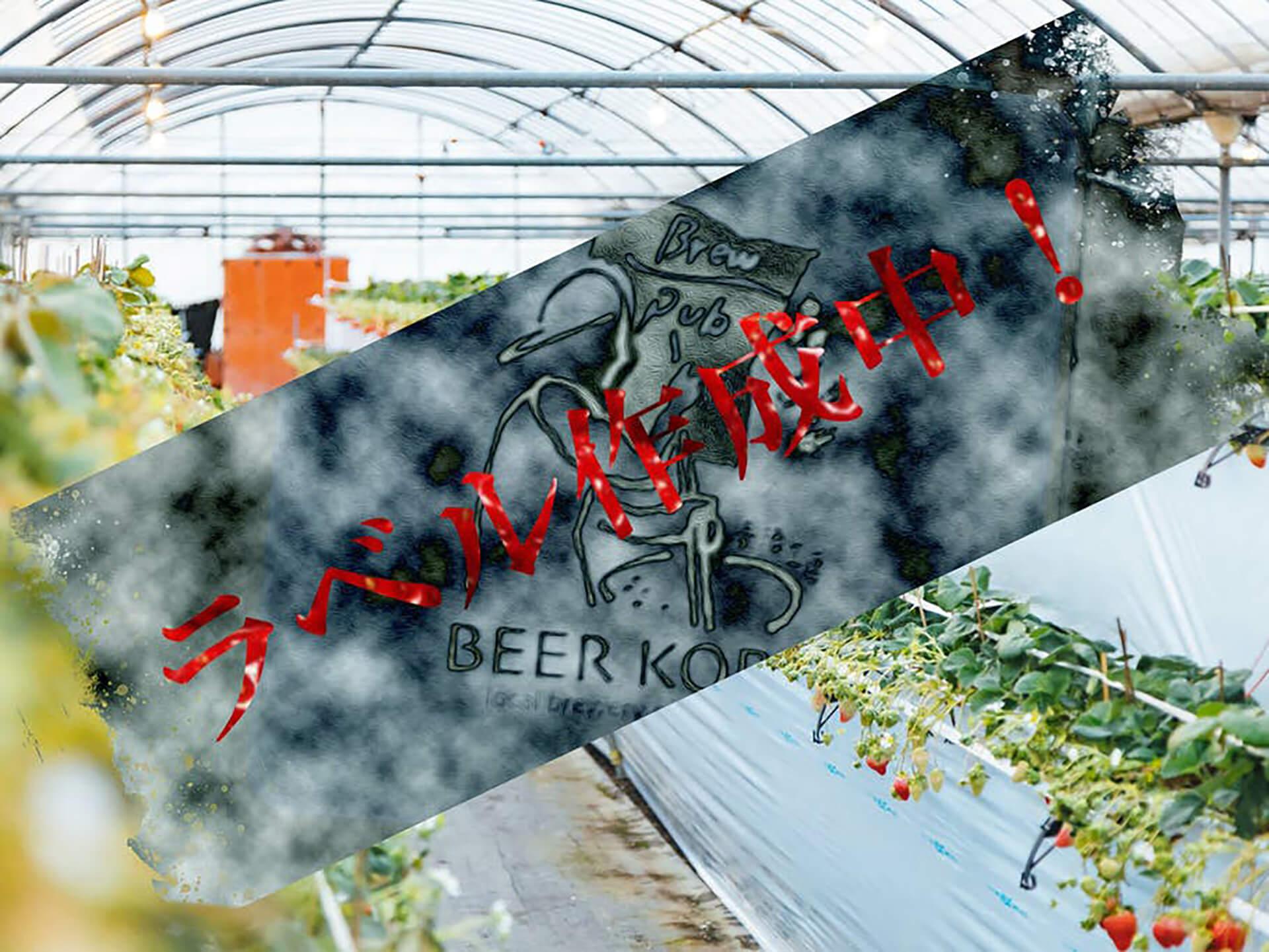 いちごビール醸造共同プロジェクト・イメージ