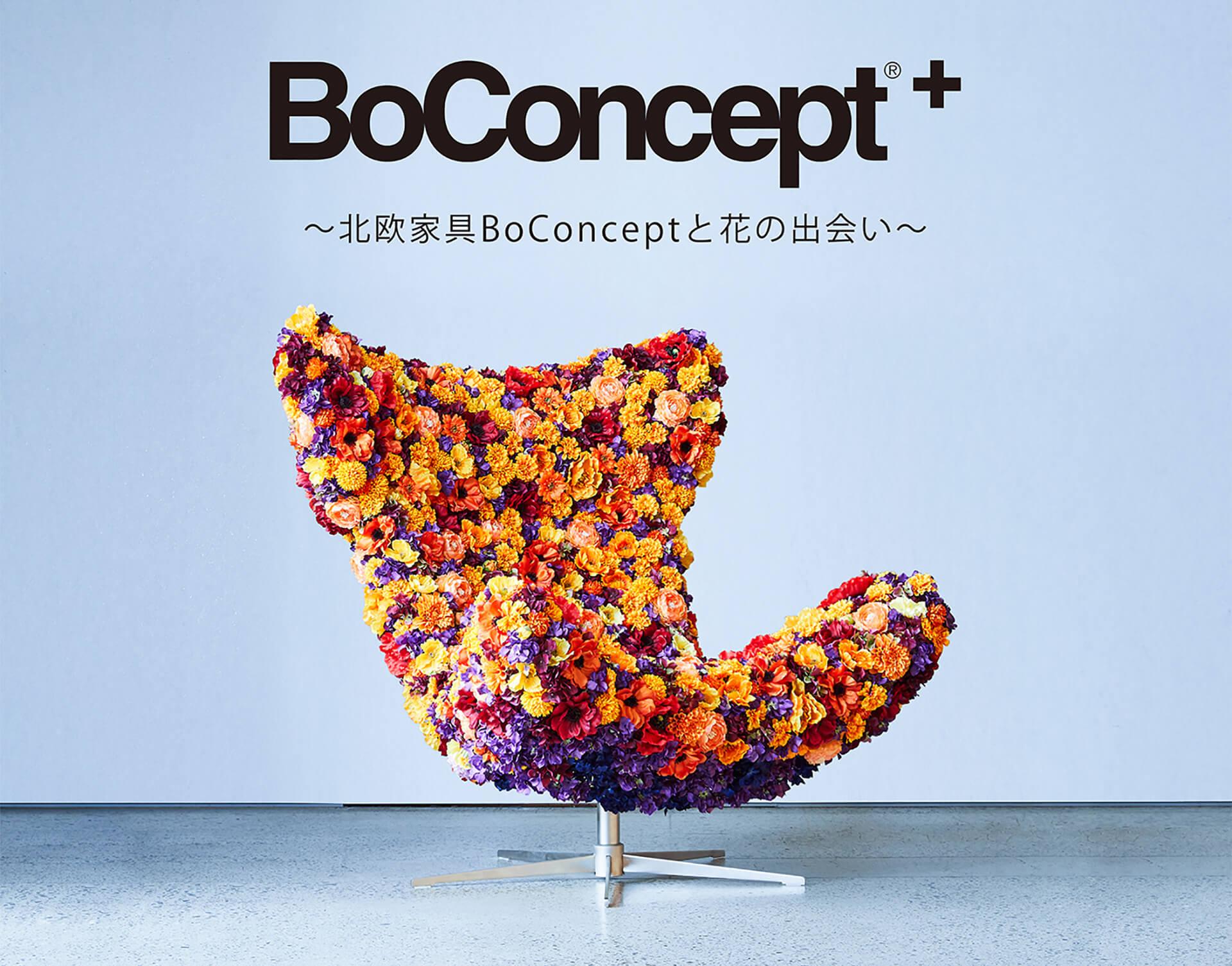 前田有紀×BoConcept