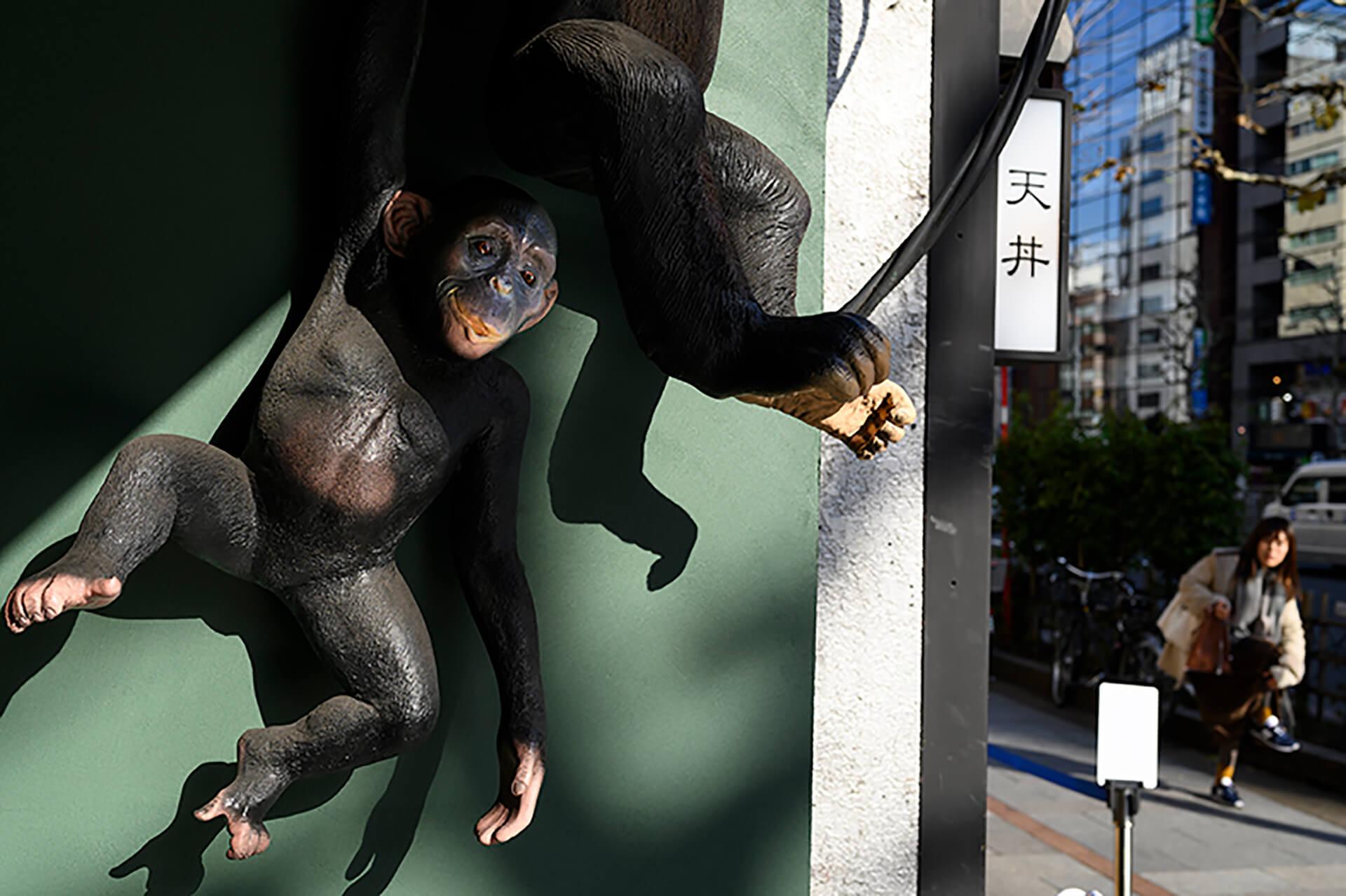 熊切大輔写真展「東京動物園 ナイトサファリ」