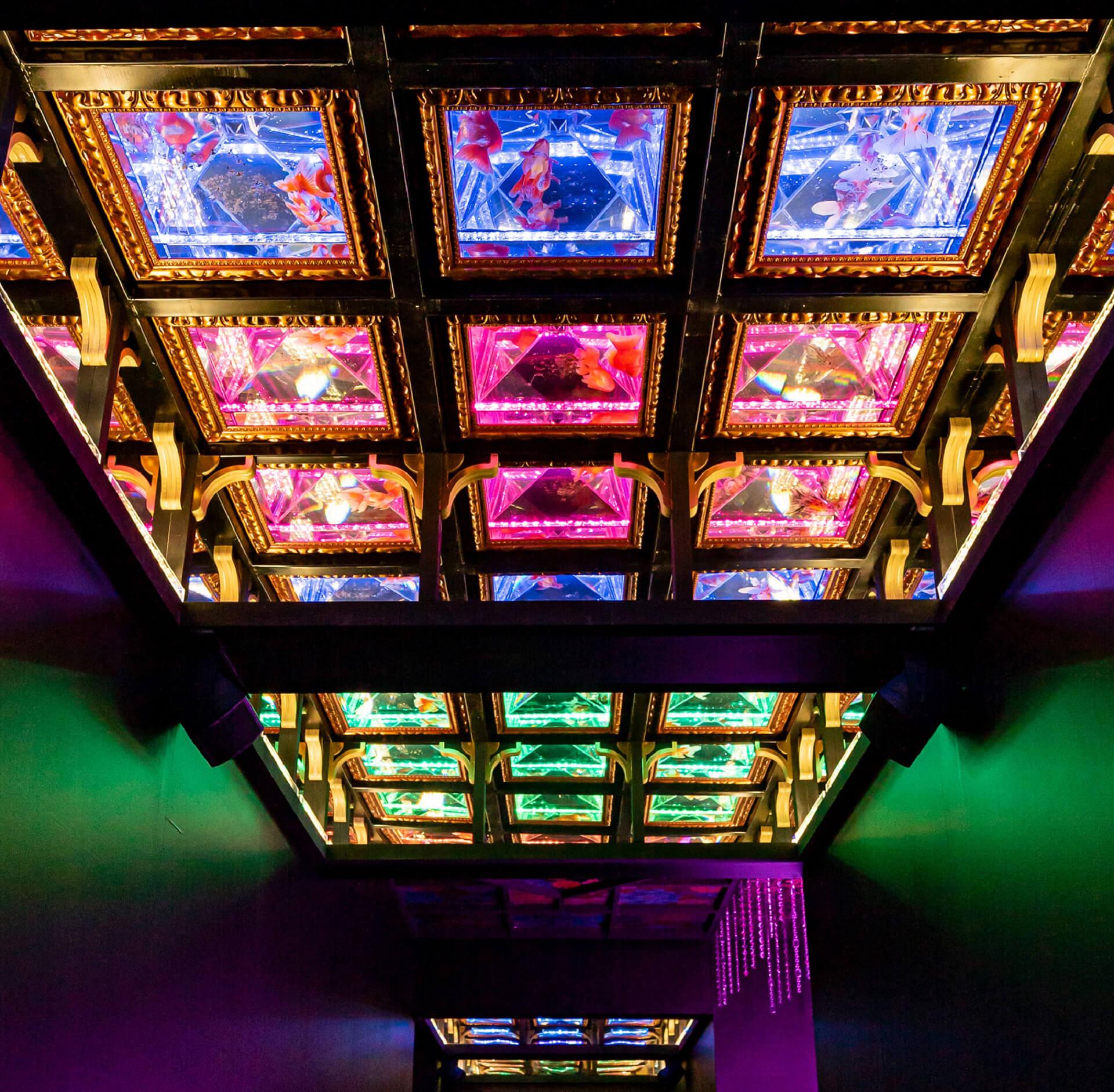アートアクアリウム美術館