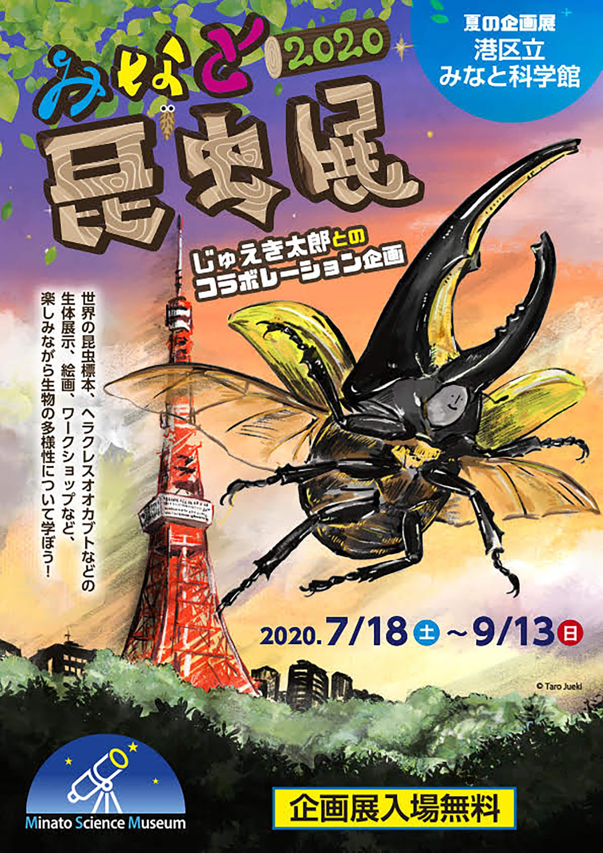 夏の企画展 みなと昆虫展2020