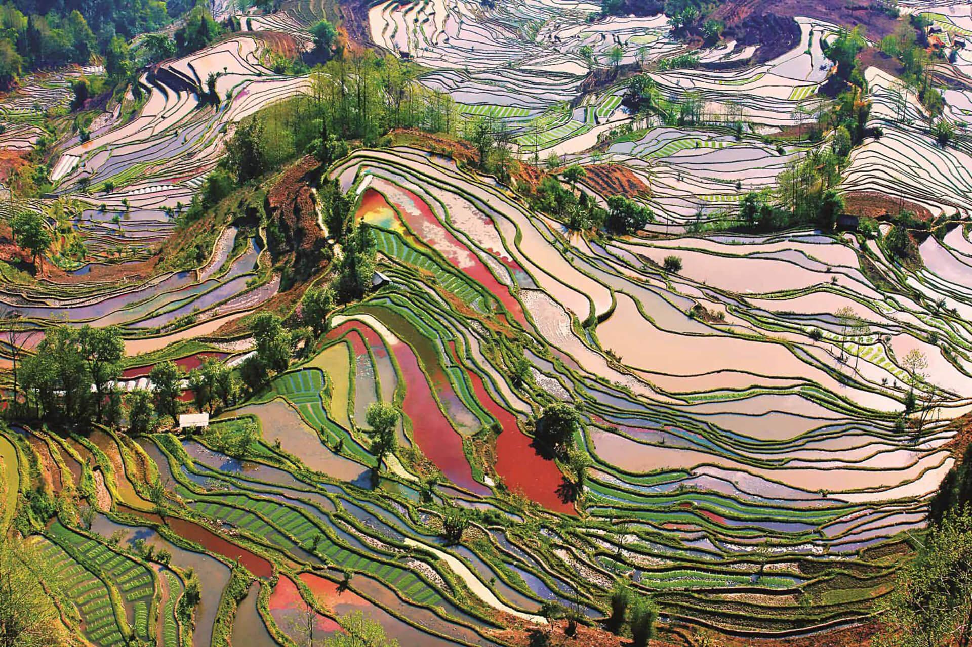 ~100枚の写真で旅する!~ 中国世界遺産