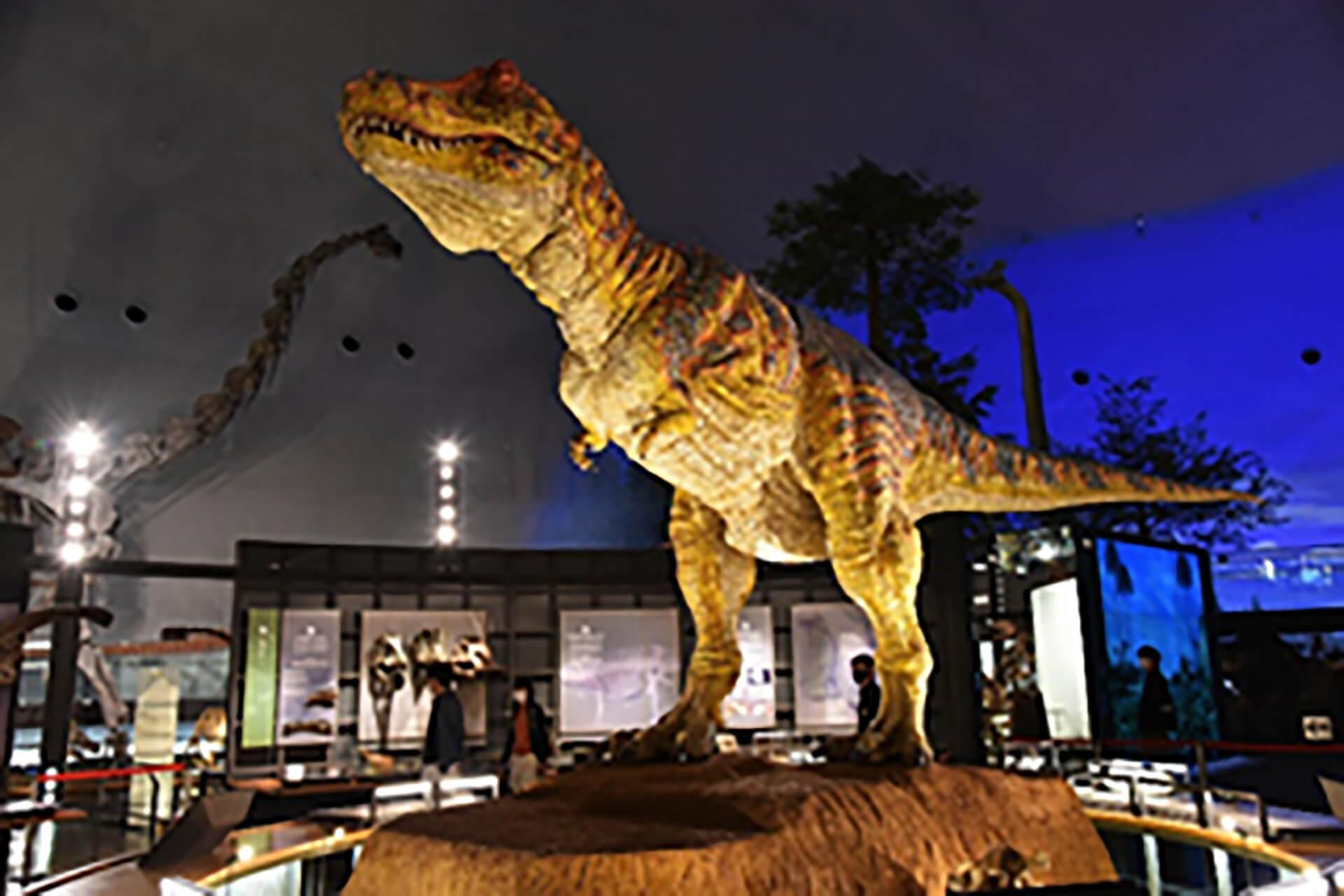 チコちゃんといっしょに課外授業・福井県立恐竜博物館