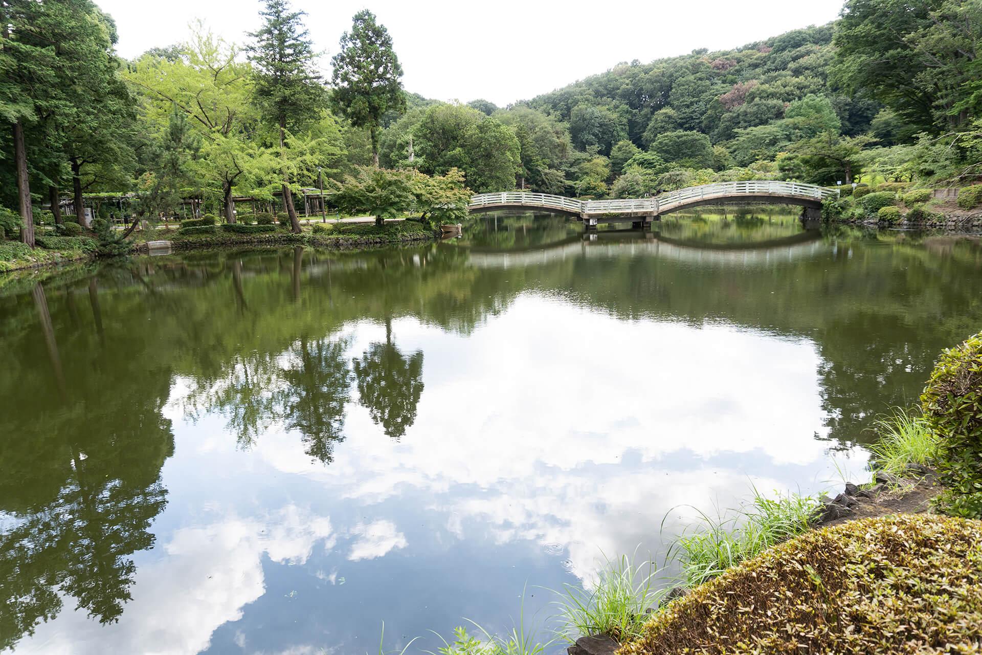 町田リス園 薬師池公園
