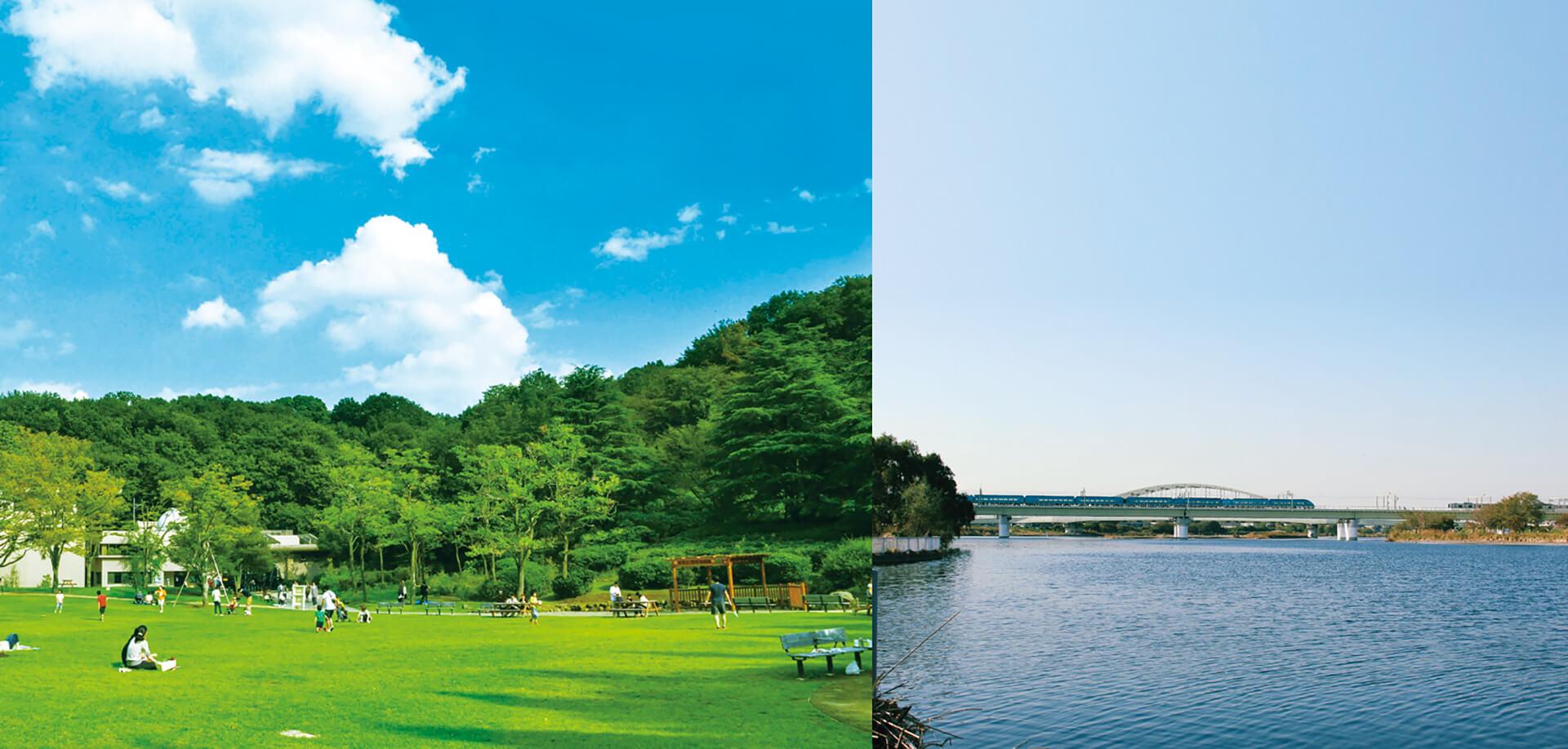 秋の生田緑地⇔多摩川 ピクニックラリー