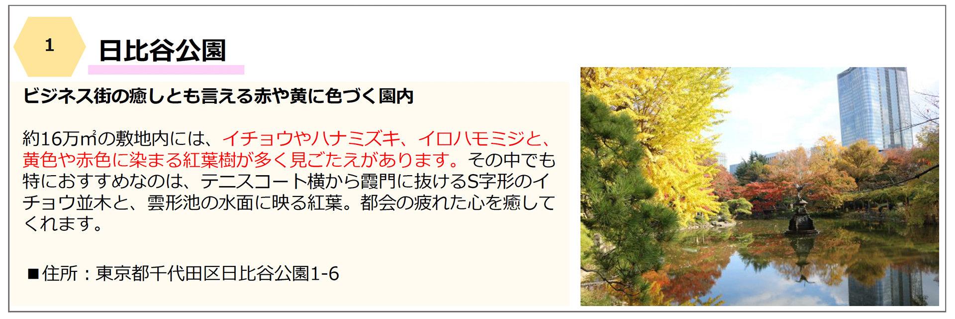 千代田区の「紅葉名所」6選