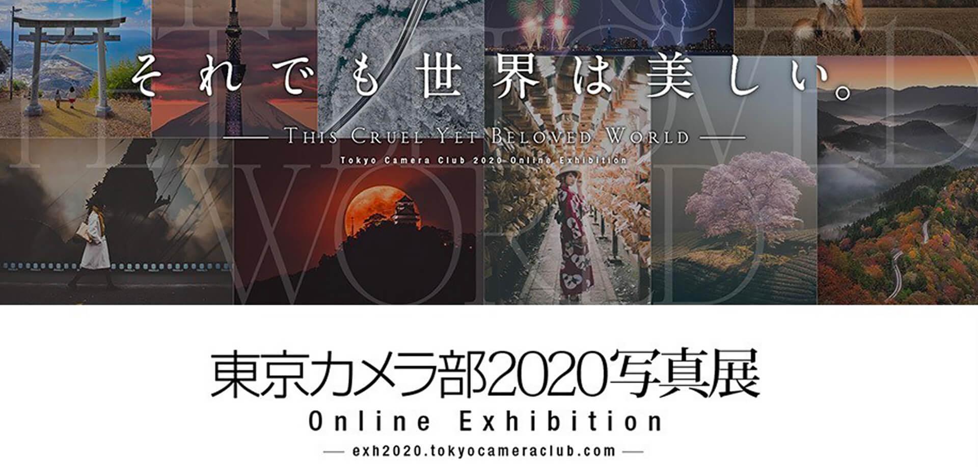 東京カメラ部2020写真展 Online Exhibition