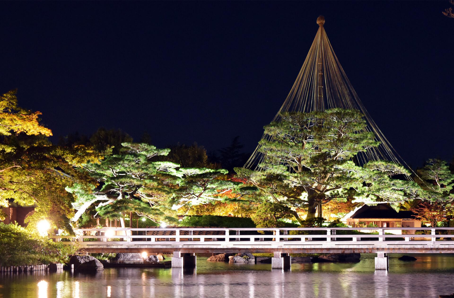 国営昭和記念公園「黄葉紅葉まつり」「秋の夜散歩2020」