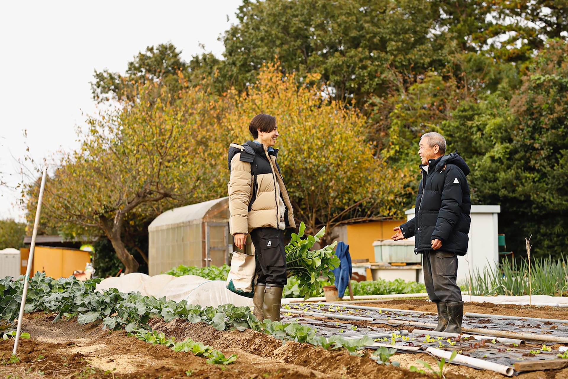 冬の野菜市