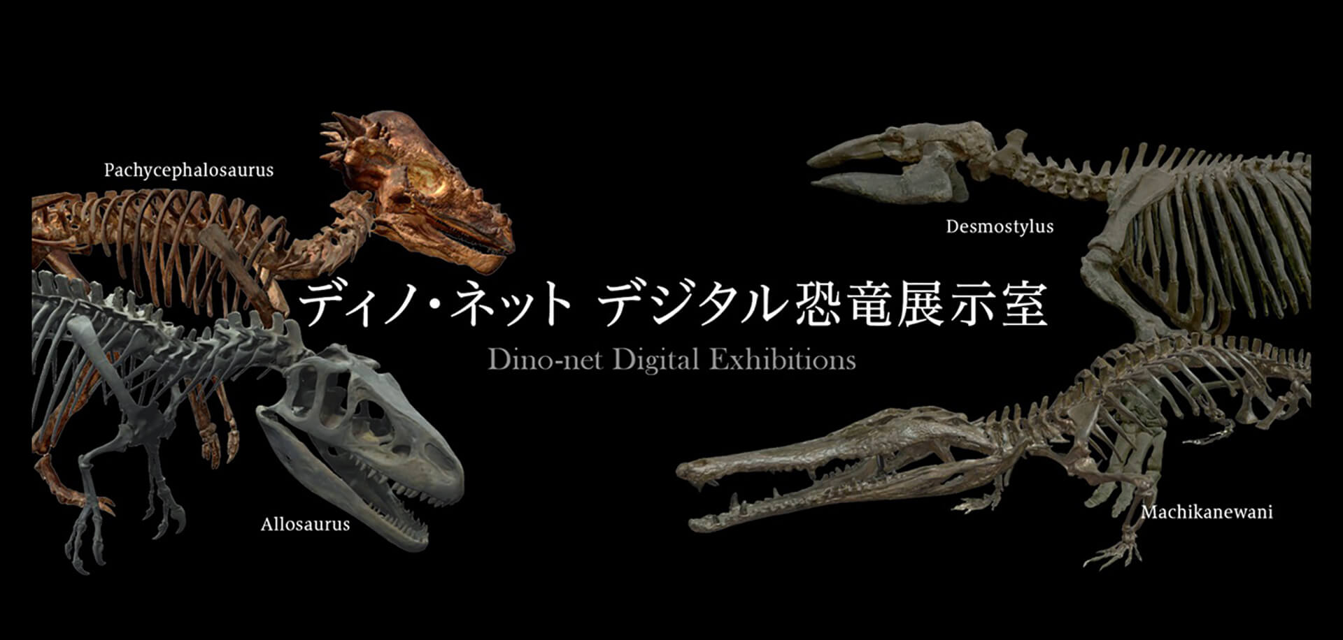 ディノ・ネット デジタル恐竜展示室