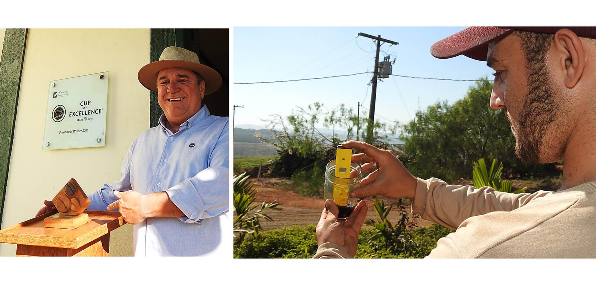 グアリロバ農園 ニュークロップお試しフェア