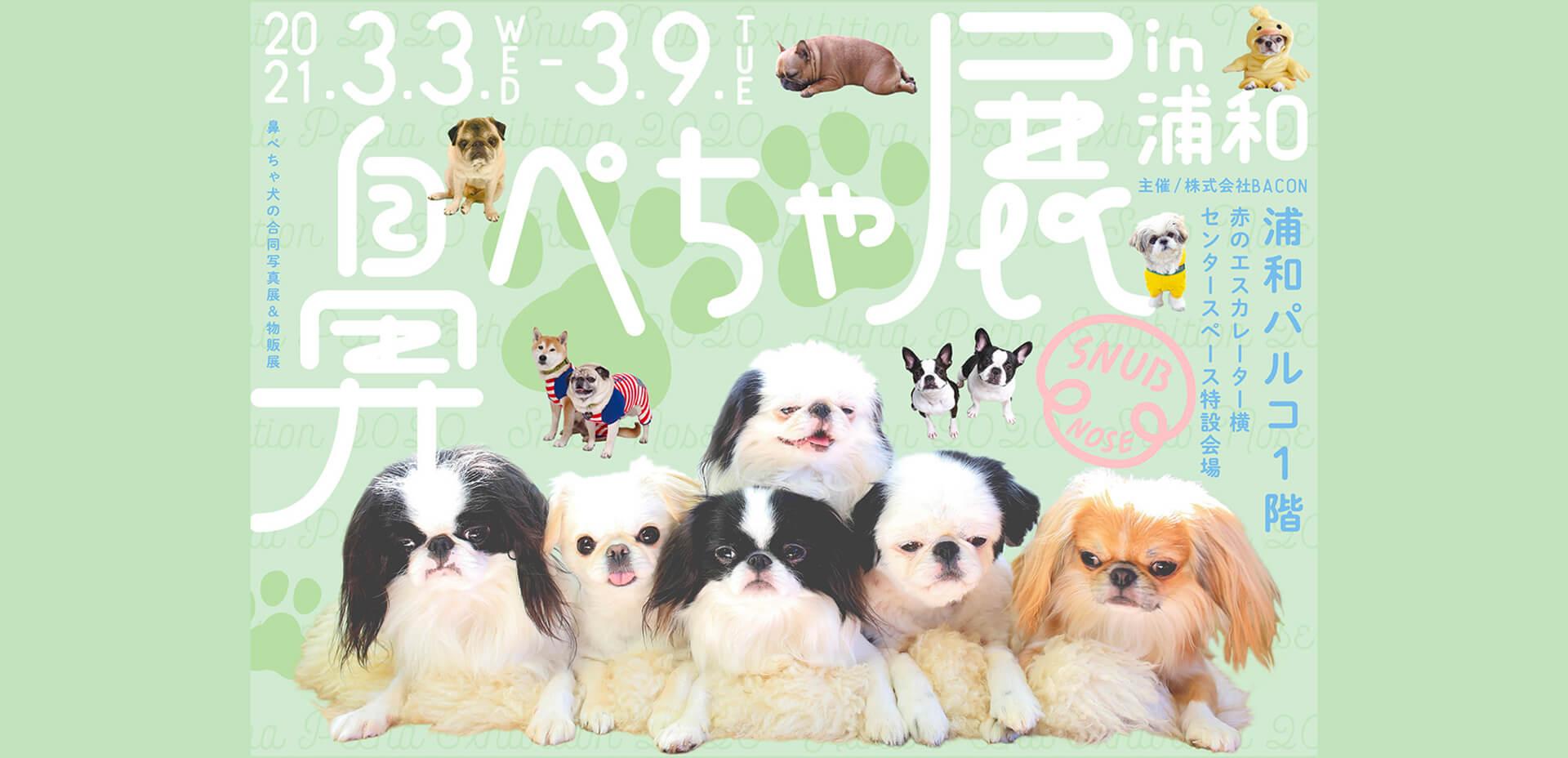 鼻ぺちゃ犬の合同写真展&物販展「鼻ぺちゃ展 in 浦和」