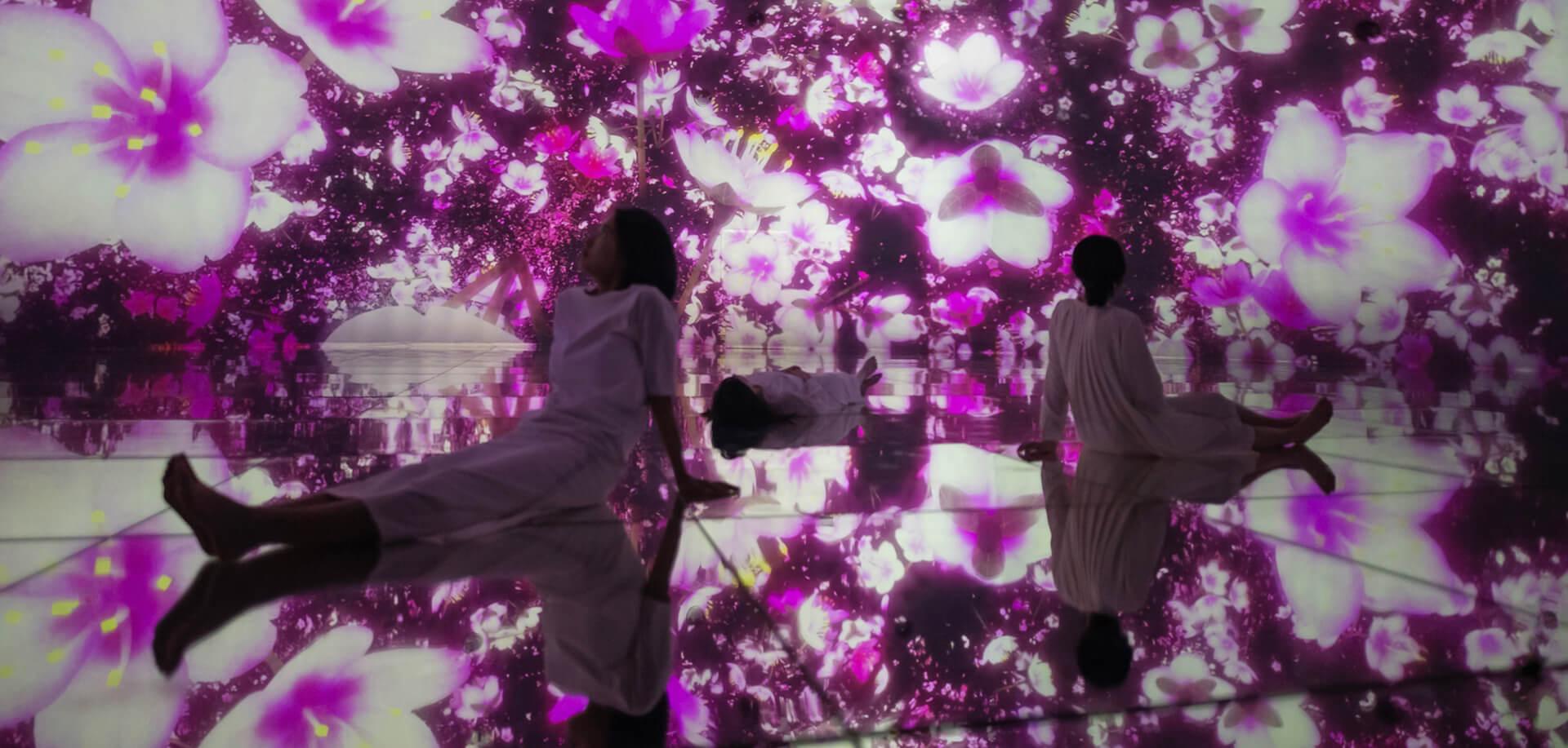 チームラボプラネッツ TOKYO DMM・季節展示