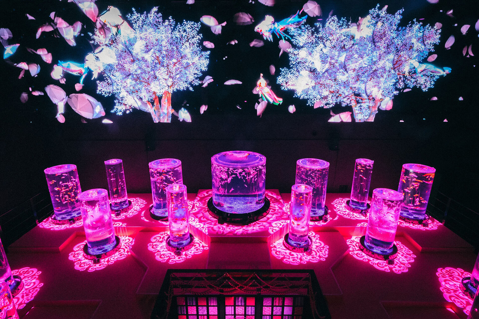 アートアクアリウム美術館「桜金魚 舞い泳ぐ」