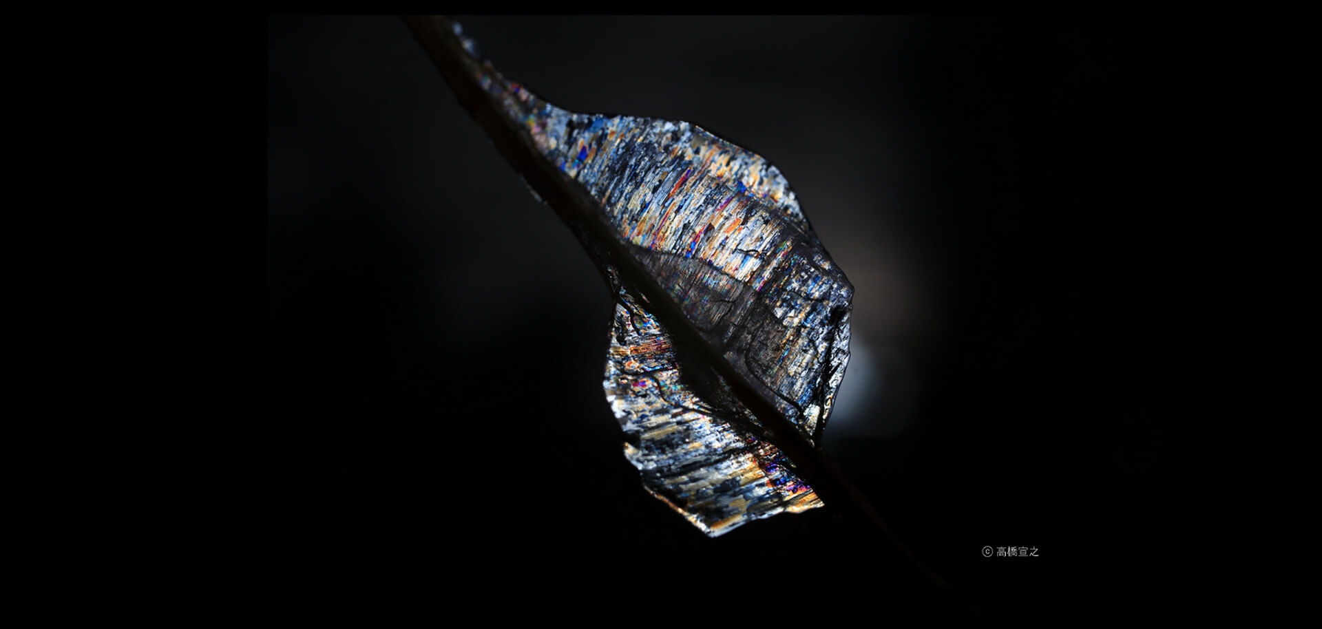 高橋宣之写真展「神々の水系」