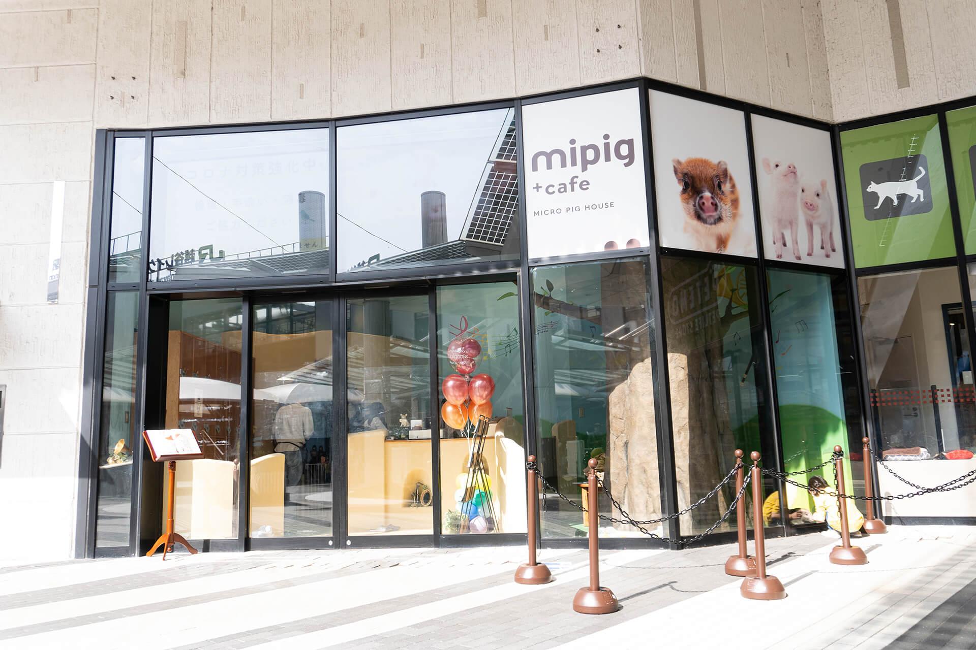 マイピッグカフェ越谷レイクタウン店