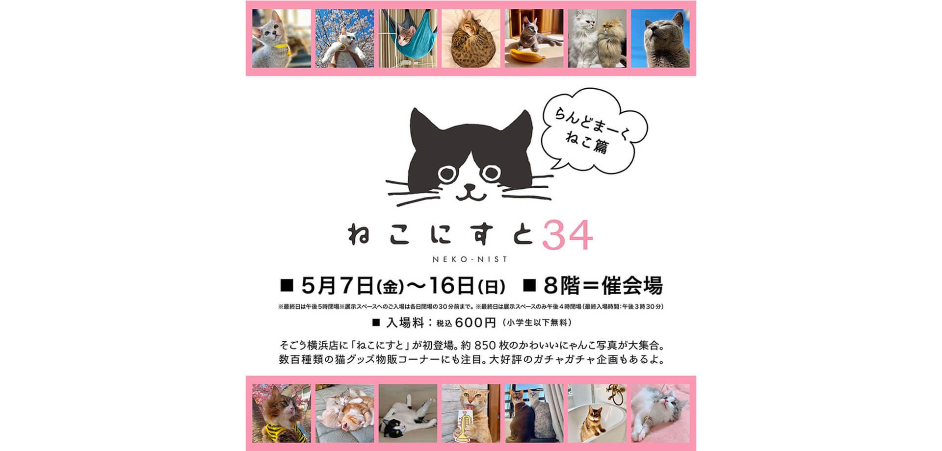 【そごう横浜店】ねこにすと34 -らんどまーくねこ篇-