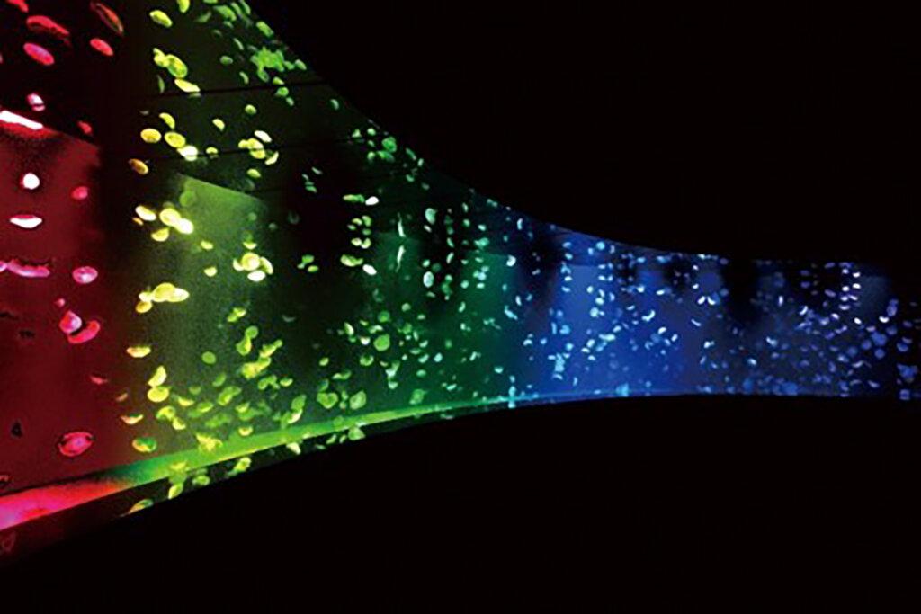 夜のサンシャイン水族館 夜コウセイLove