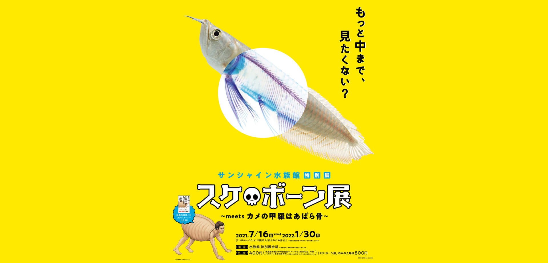 サンシャイン水族館 特別展「スケ💀ボーン展~meets カメの甲羅はあばら骨~」